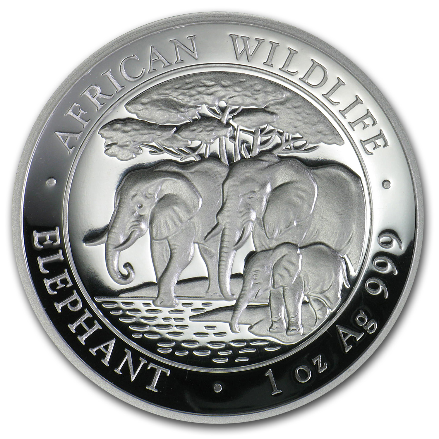 2013 Somalia 1 oz Silver African Elephant (High Relief)