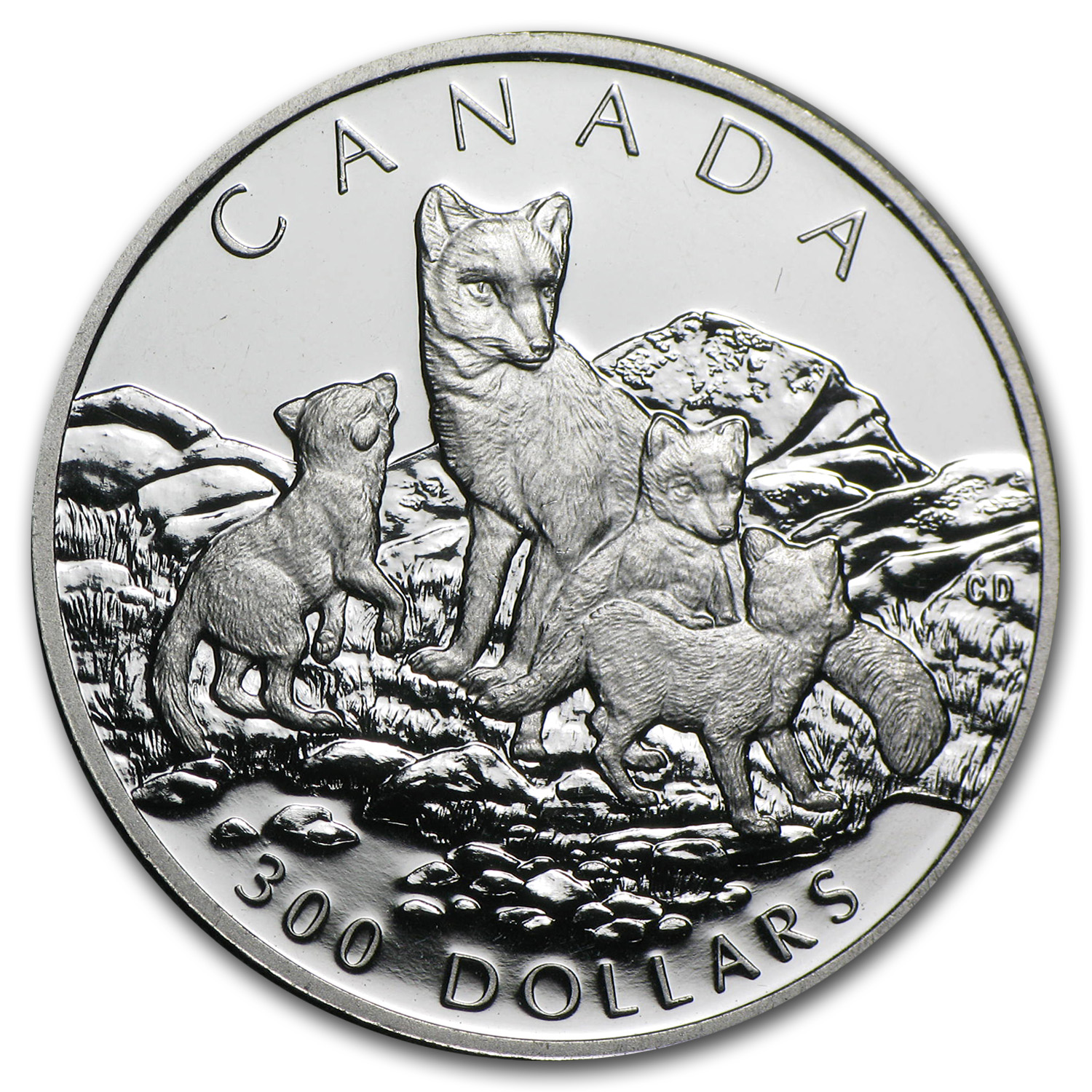 1993 1 oz Canadian Platinum Arctic Fox $300 (Scruffy)
