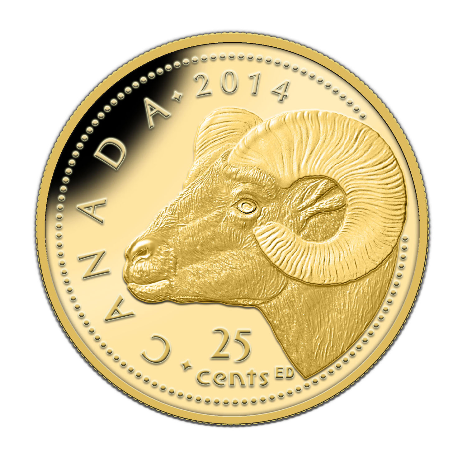2014 1/2 Gram Gold Canadian $0.25 - Rocky Mountain Bighorn Sheep