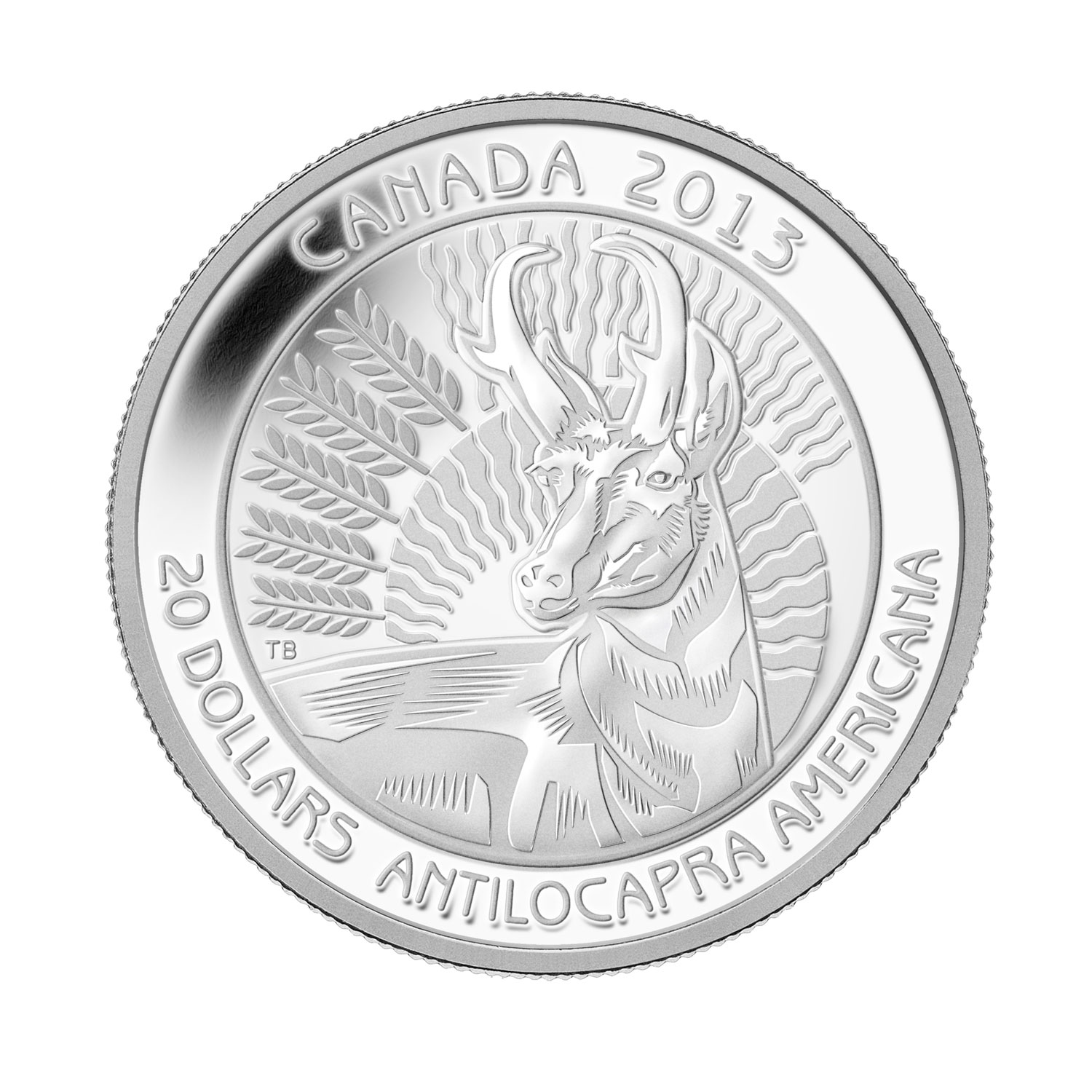 2013 1 oz Silver Canadian $20 Coin - Pronghorn