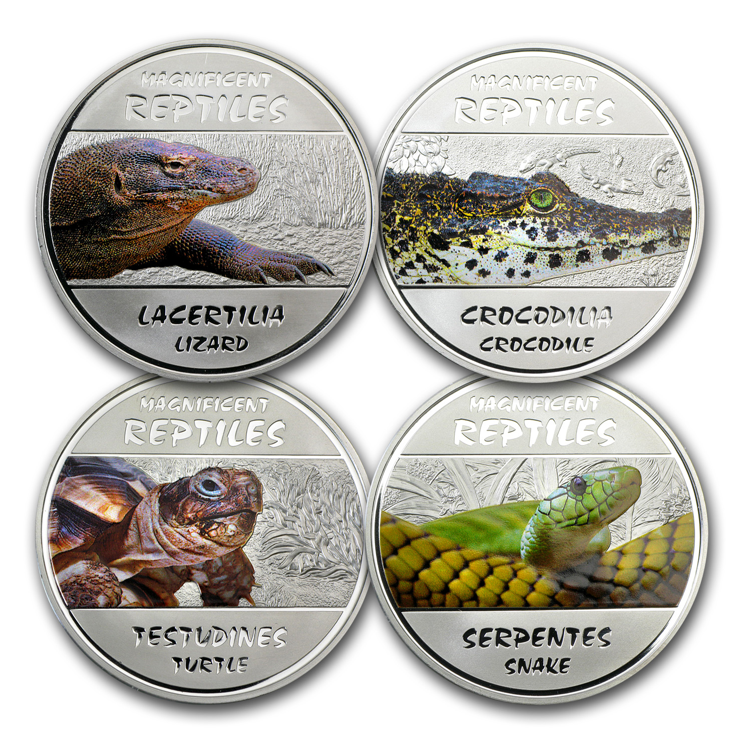 Congo 2013 Silver Proof Magnificent Reptiles 4-coin set