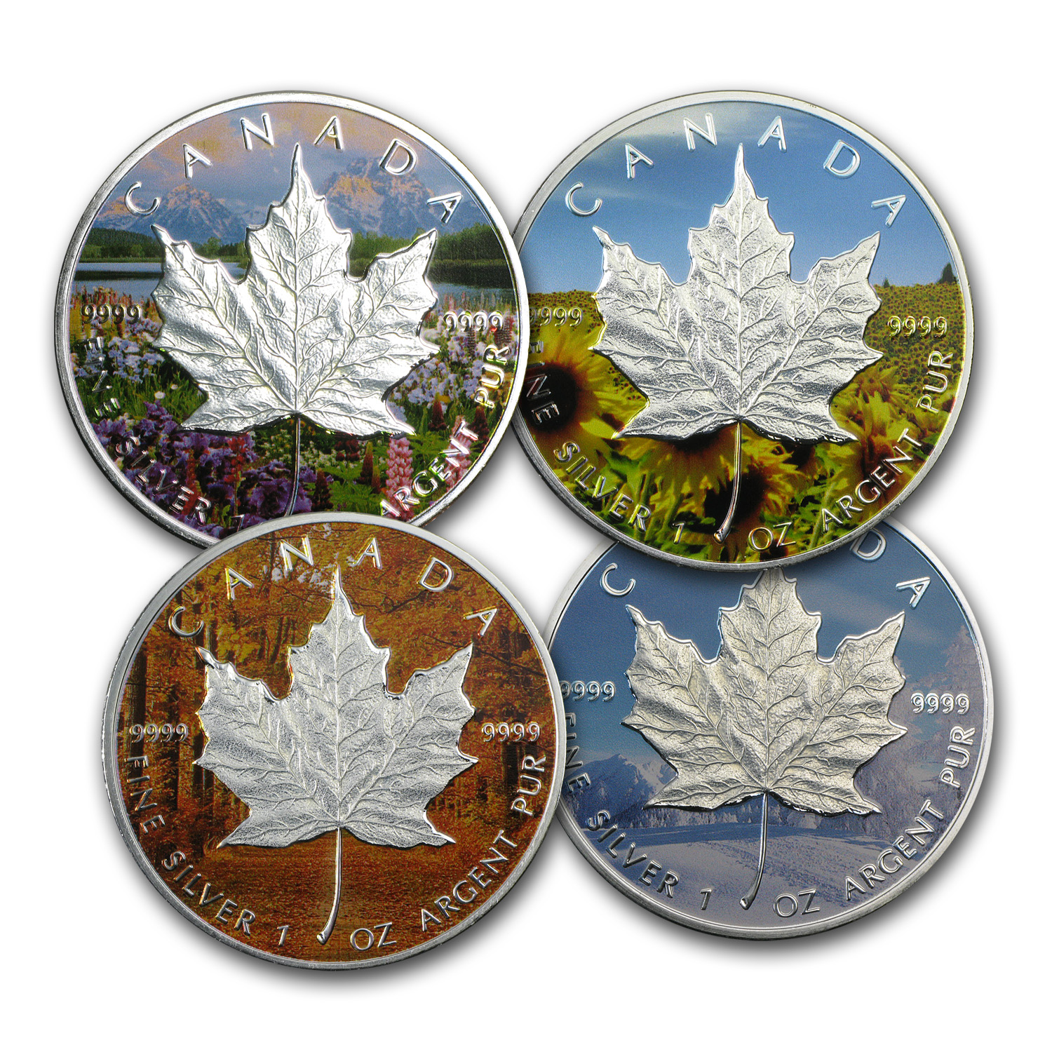 2013 4-Coin Silver Canadian Maple Leaf Set (Four Seasons)