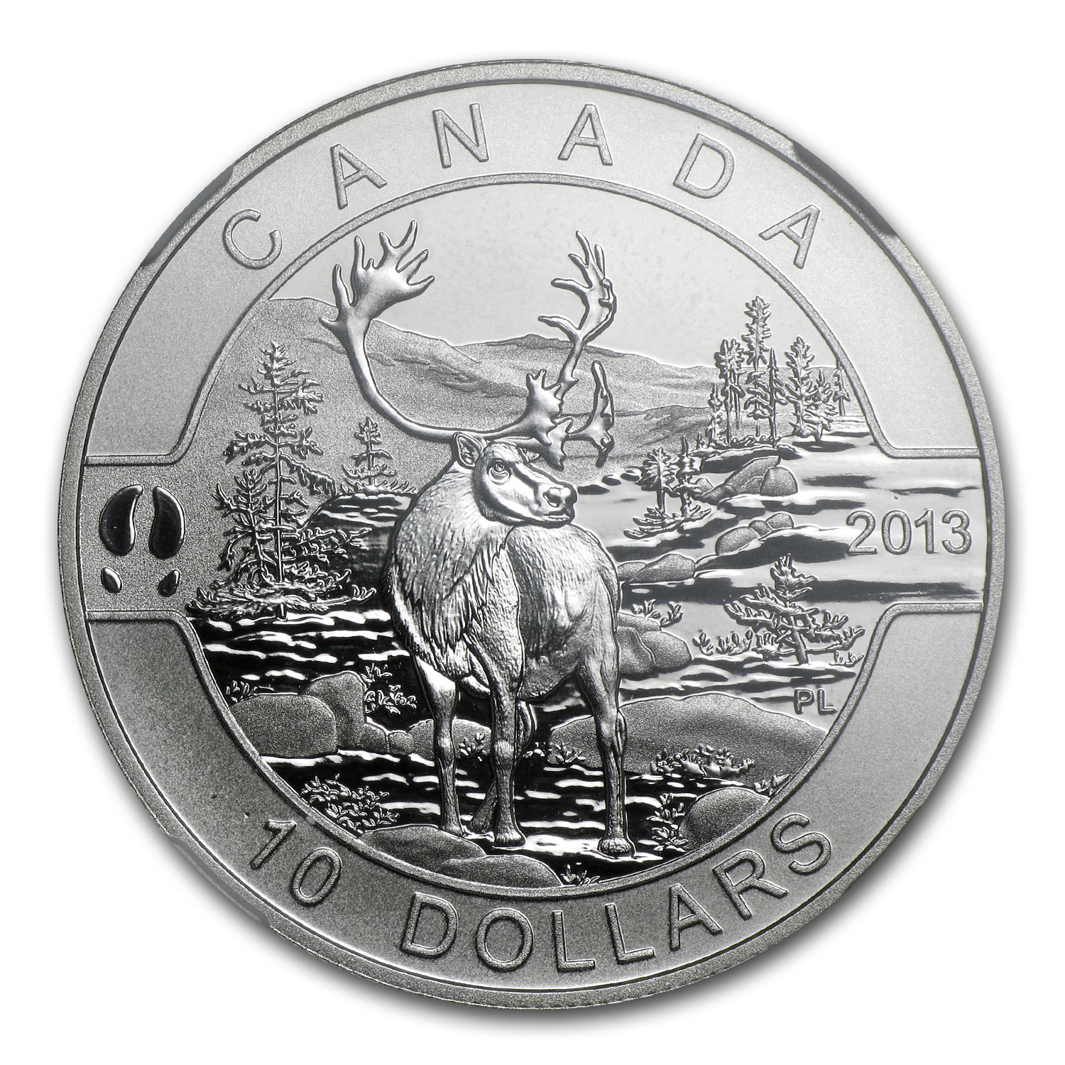 2013 1/2 oz Silver Canadian $10 The Caribou PF-69 Matte NGC - ER