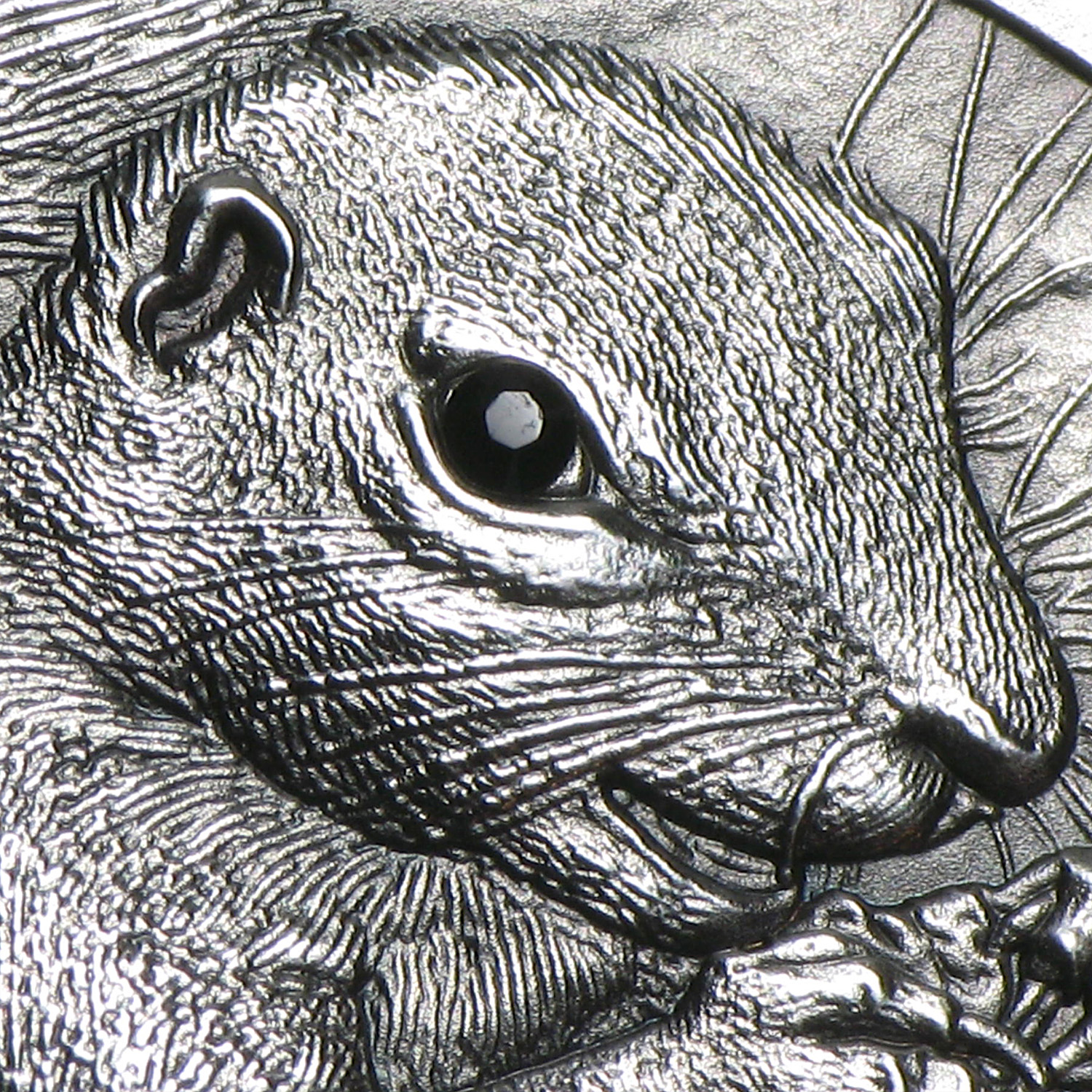 Palau 2013 $5 1 oz Antique Finish Silver Barbary Ground Squirrel