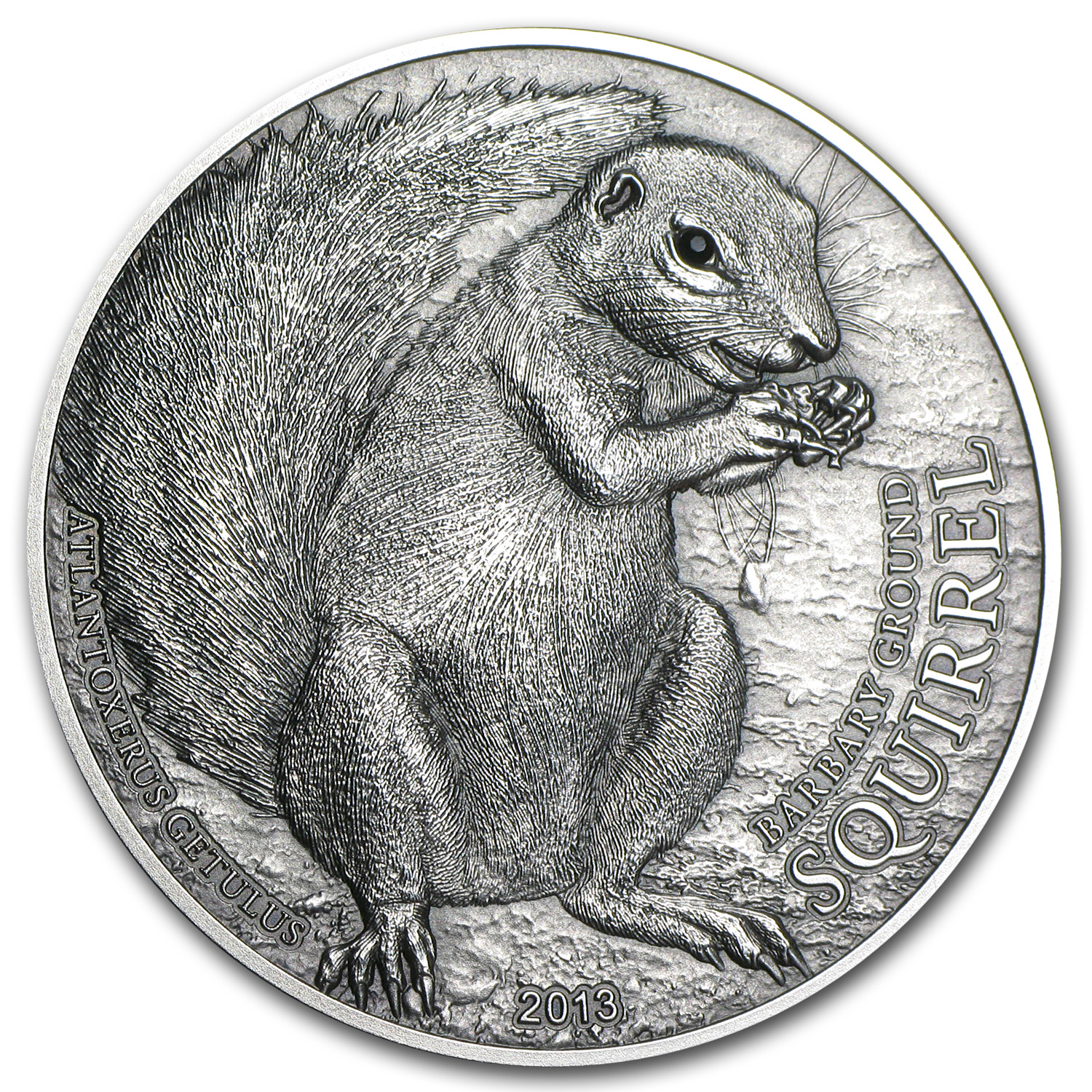 2013 Palau 1 oz Silver $5 Barbary Grnd Squirrel (Antique Finish)