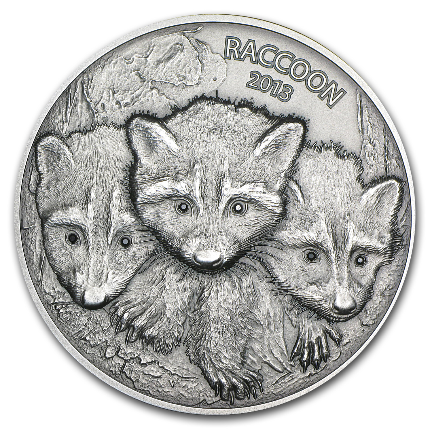 2013 Vanuatu 2 oz Silver Forest Animals The Raccoon