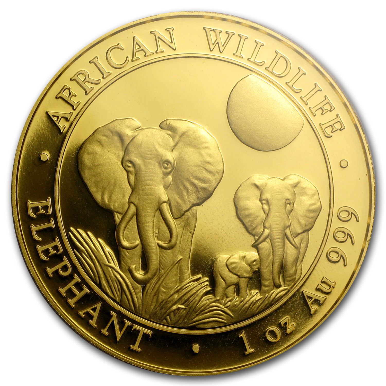 2014 Somalia 1 oz Proof Gold African Elephant PR-70 PCGS