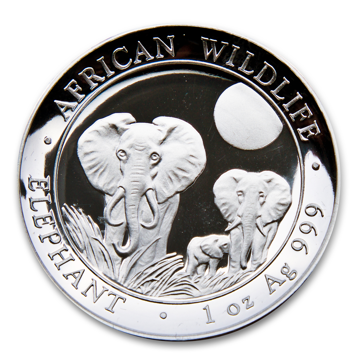 2014 1 oz Silver Somalian Elephants (High Relief)