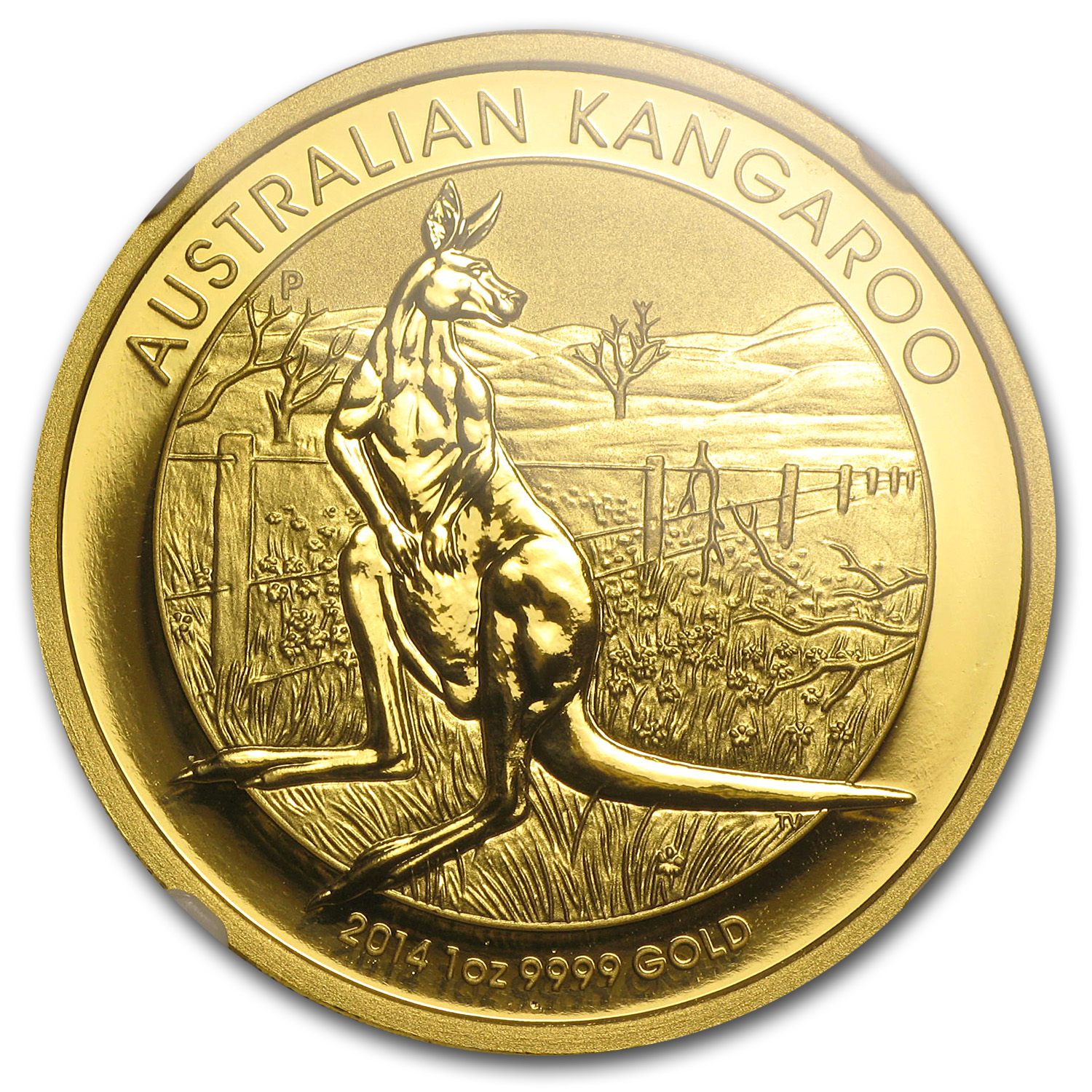 2014 1 oz Australian Gold Kangaroo MS-70 NGC (Early Releases)