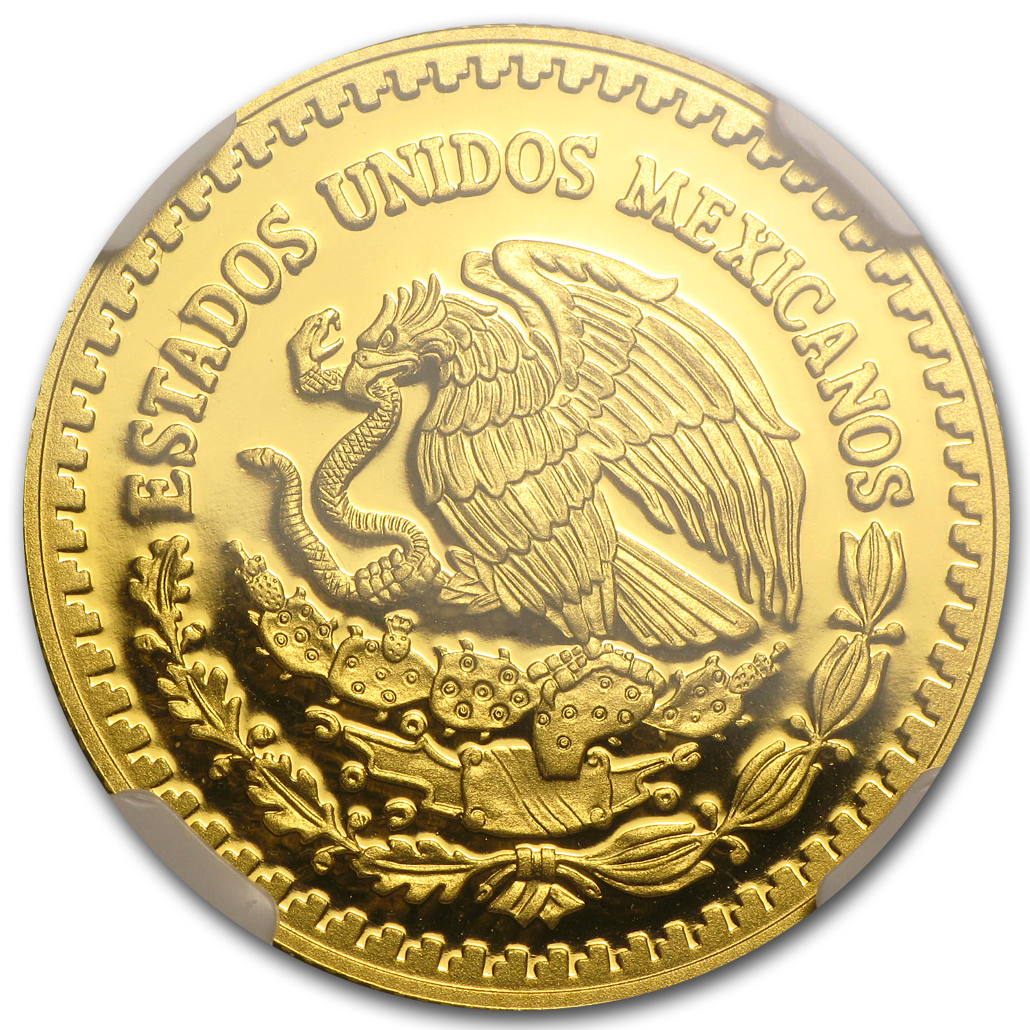 2013 Mexico 1/2 oz Gold Libertad PF-70 NGC