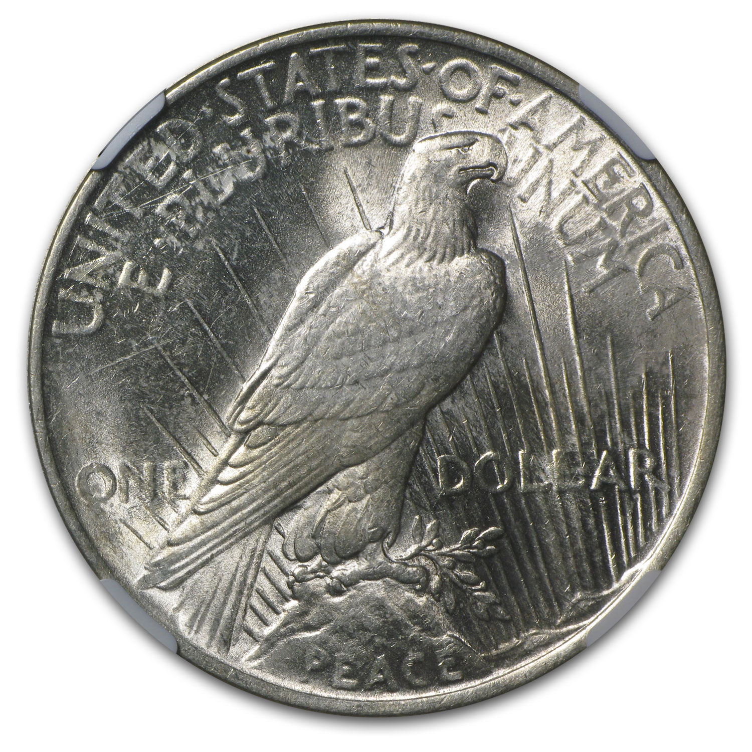 1924 Peace Dollar AU-58 NGC (Struck Thru Error)