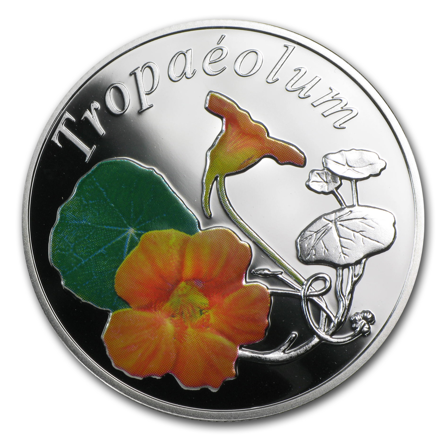 Belarus 2013 Silver Proof Under the Charm of Flowers - Nasturtium