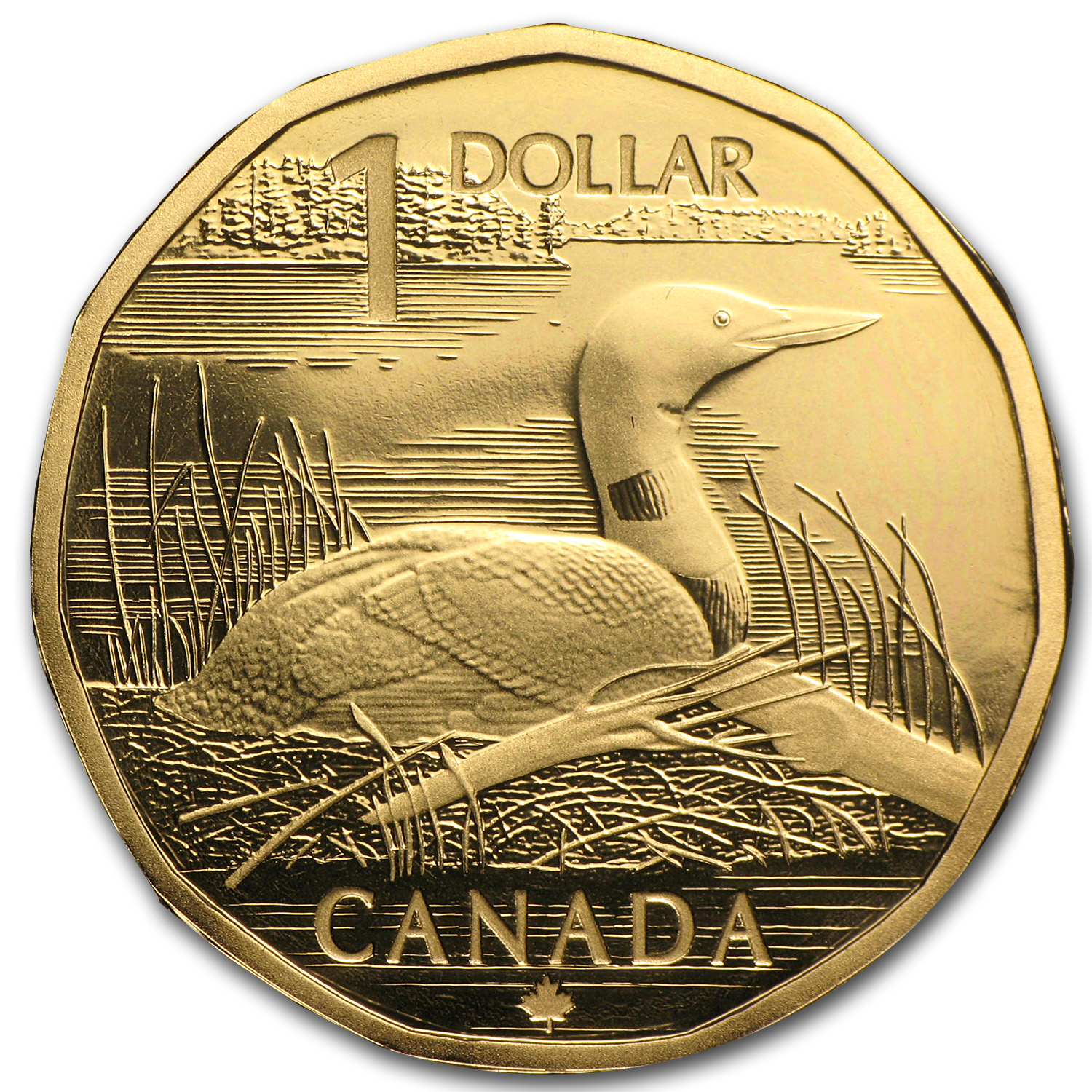 2004 Canada $1 The Elusive Loon Coin & Stamp Set