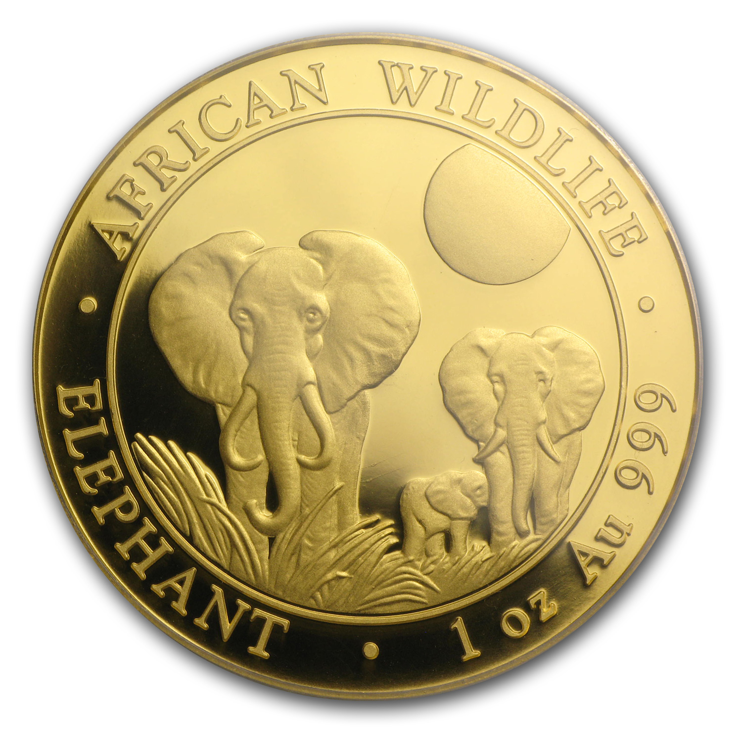 2014 Somalia 1 oz Proof Gold African Elephant PR-69 PCGS