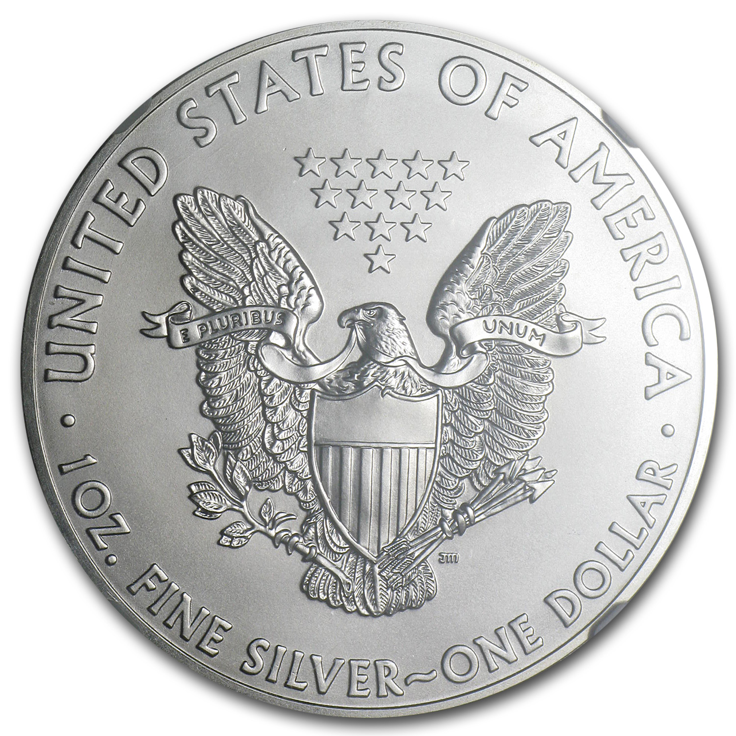 2013 Silver American Eagle MS-70 NGC