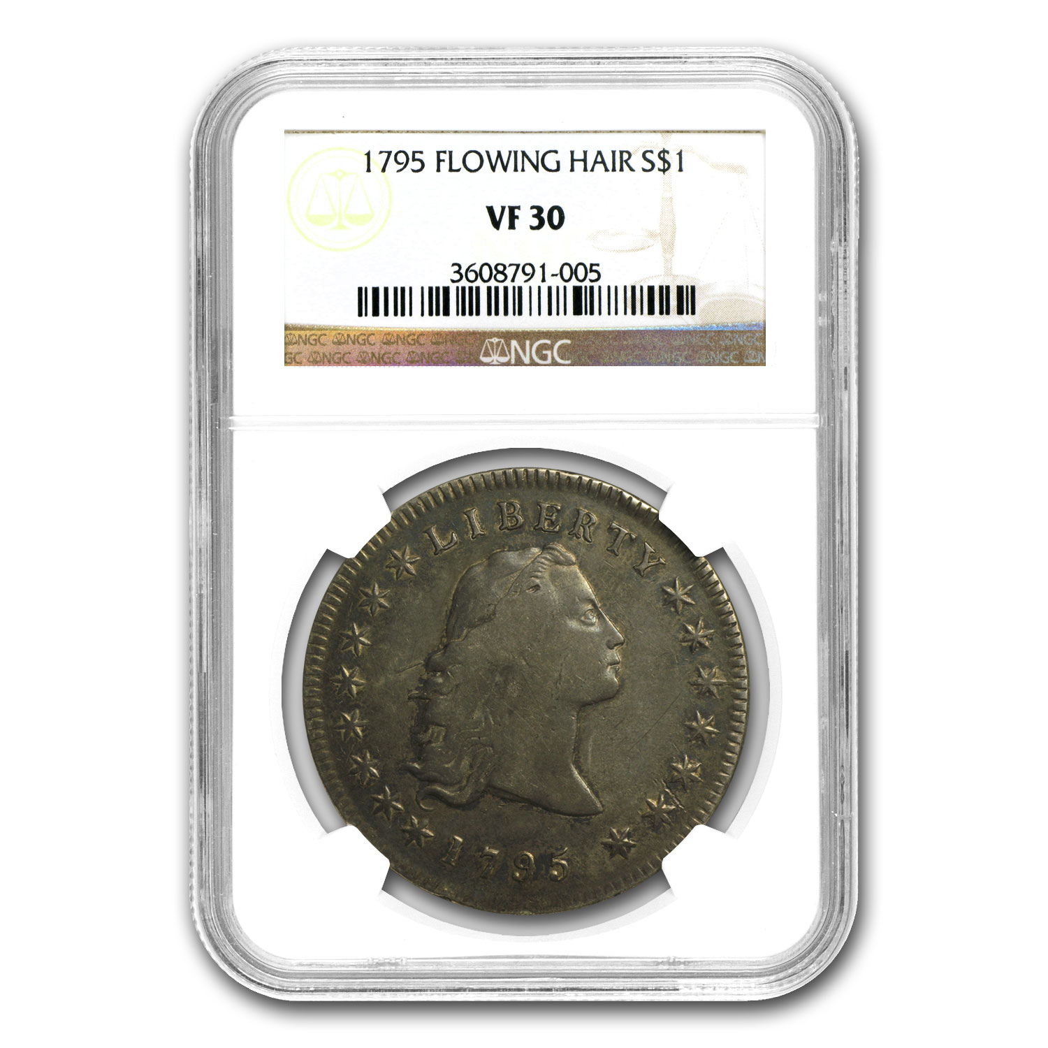 1795 Flowing Hair Dollar Very Fine-30 NGC (3 Leaves)