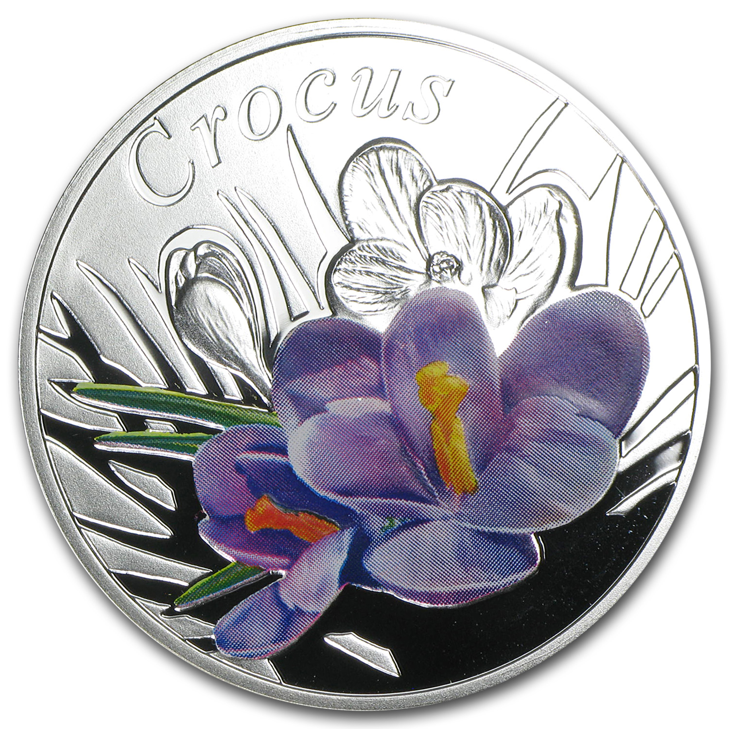 2013 Belarus Silver Proof Under the Charm of Flowers Crocus