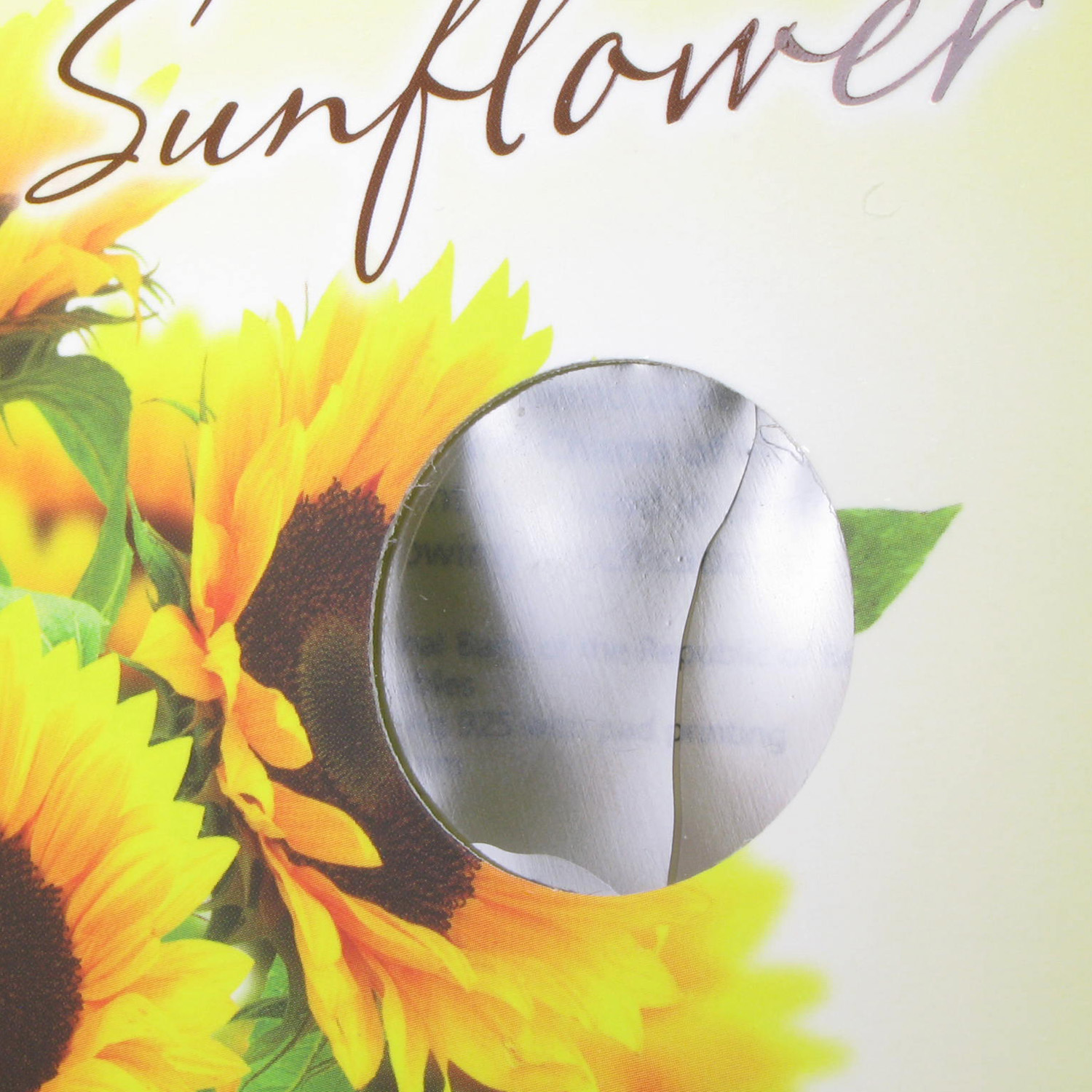 Belarus 2013 Under the Charm of Flowers Sunflower (damaged box)