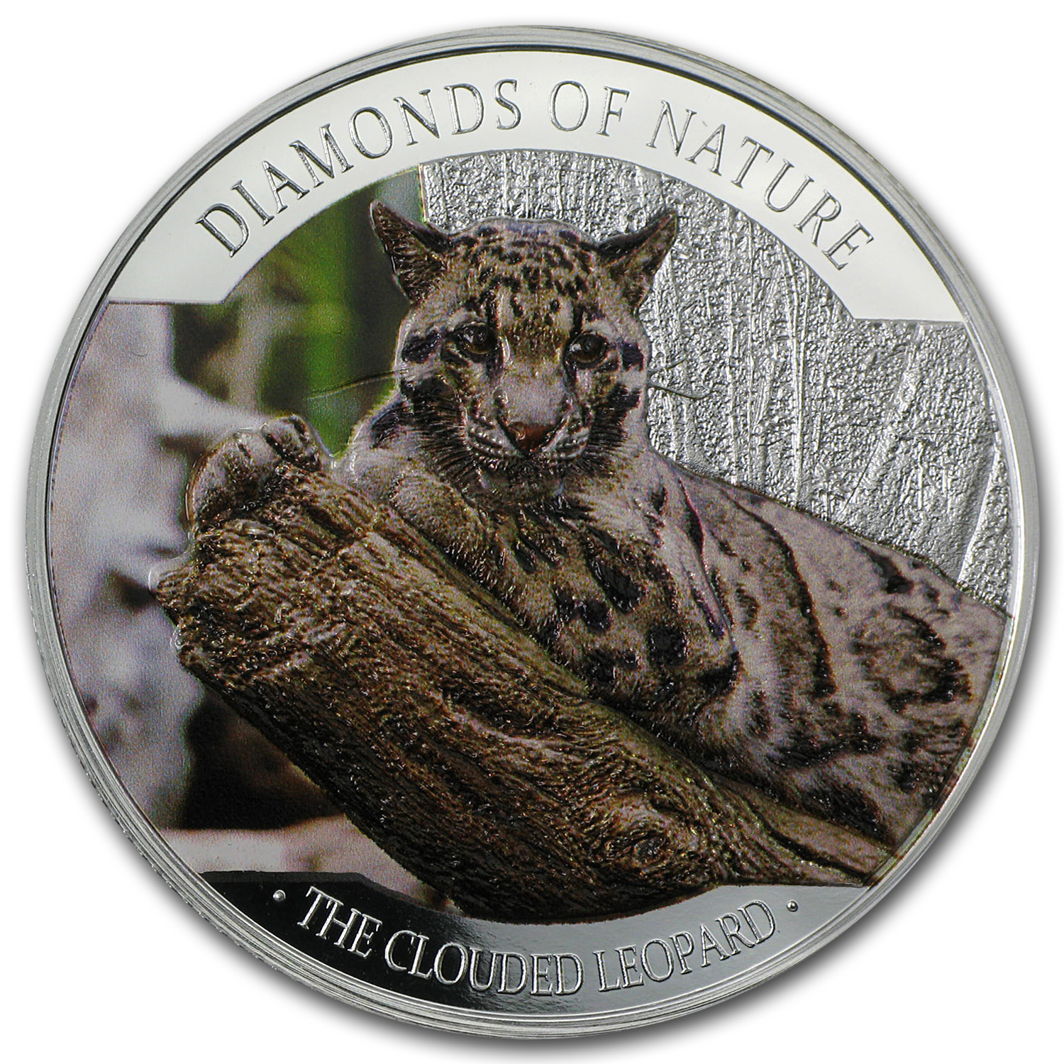 2013 Fiji Silver $10 Diamonds of Nature Clouded Leopard