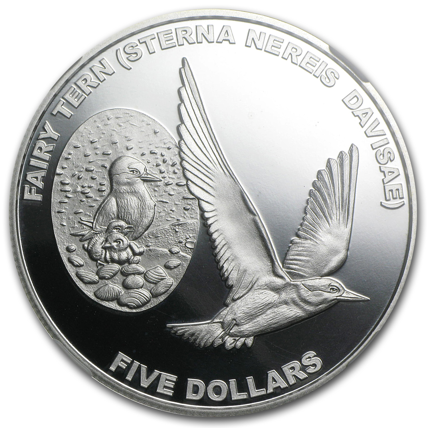 2012 1 oz Silver New Zealand $5 Fairy Tern PF-69 UCAM NGC