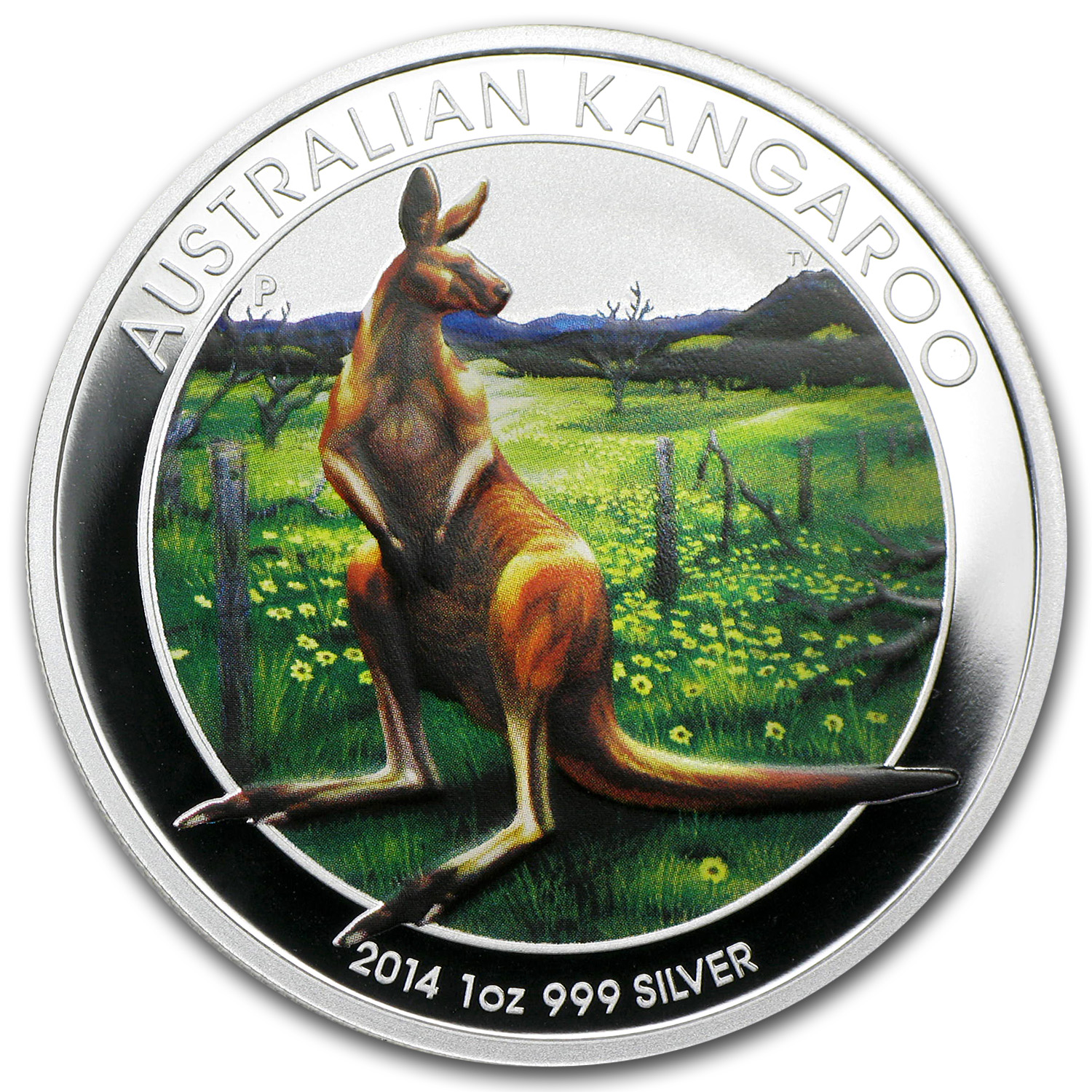 2014 1 oz Silver Kangaroo World Money Fair BU (Berlin, Colorized)