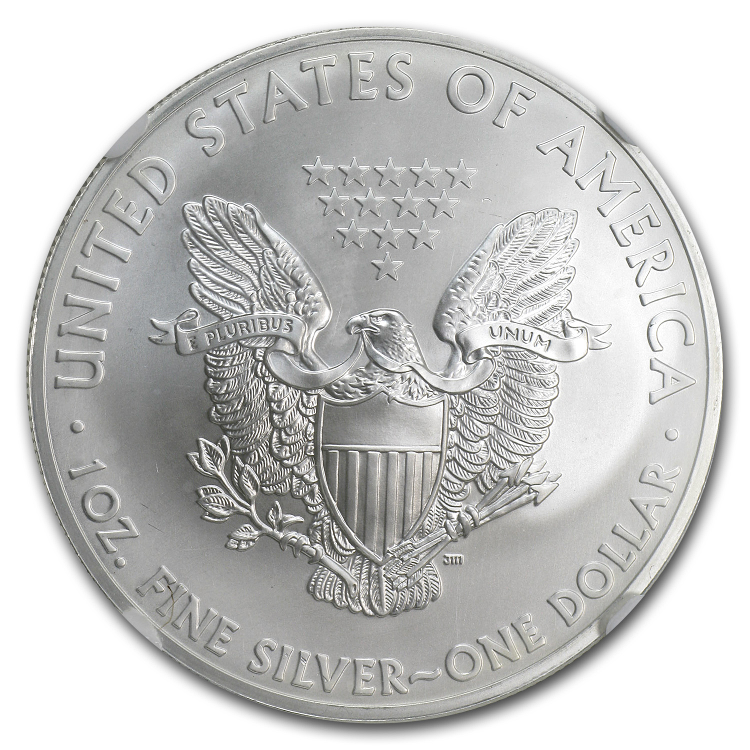 2013 (S) Silver American Eagle - MS-70 NGC - ALS Label/FR