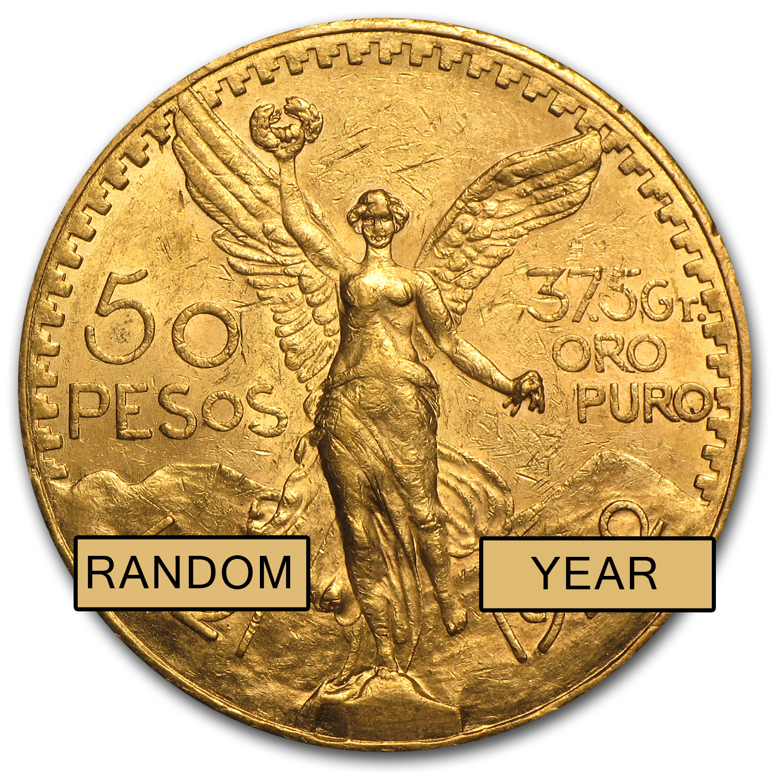 Mexican Gold 50 Pesos AGW 1.2057 (Better Dates) (AU/BU)