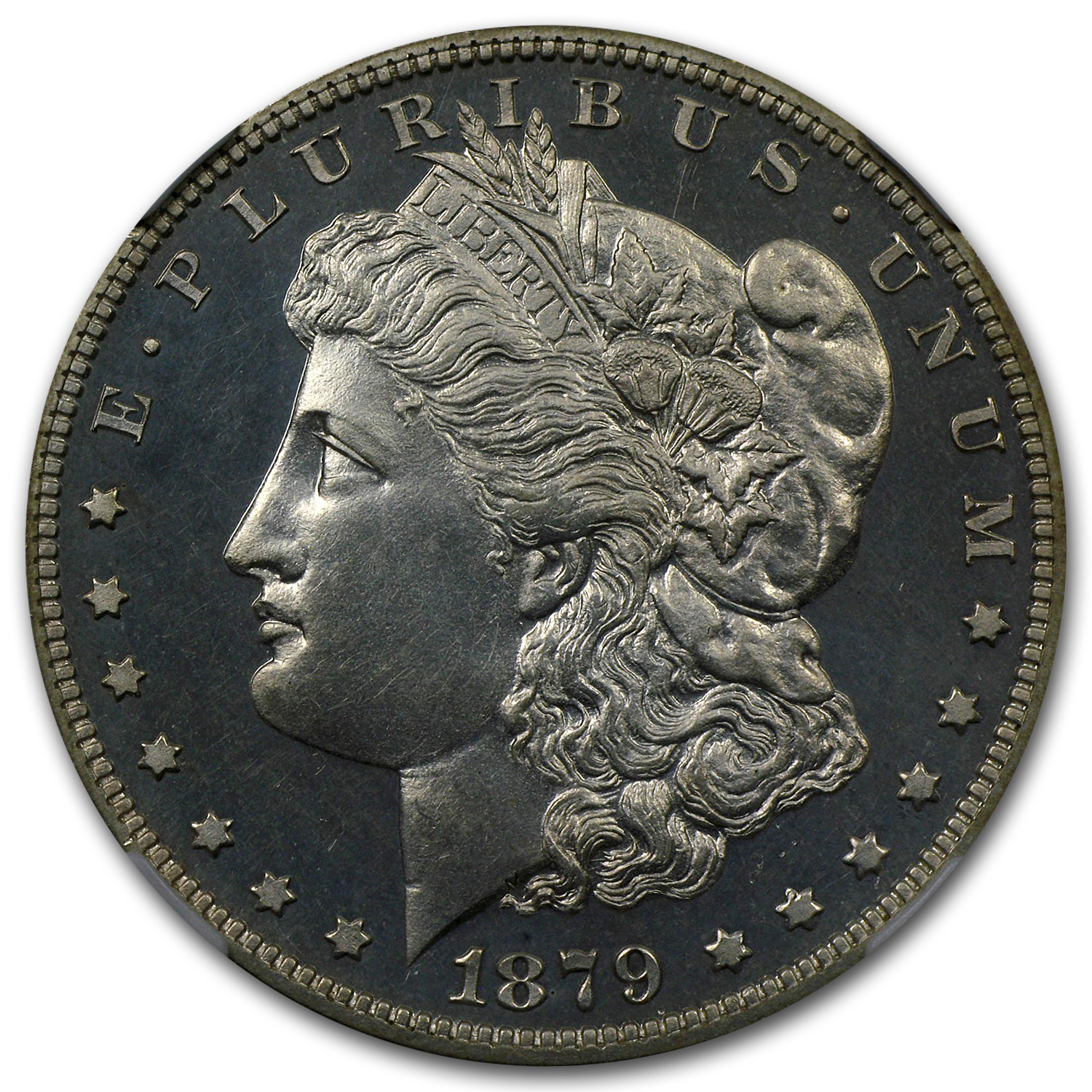 1879 Morgan Dollar PF-63 NGC Proof