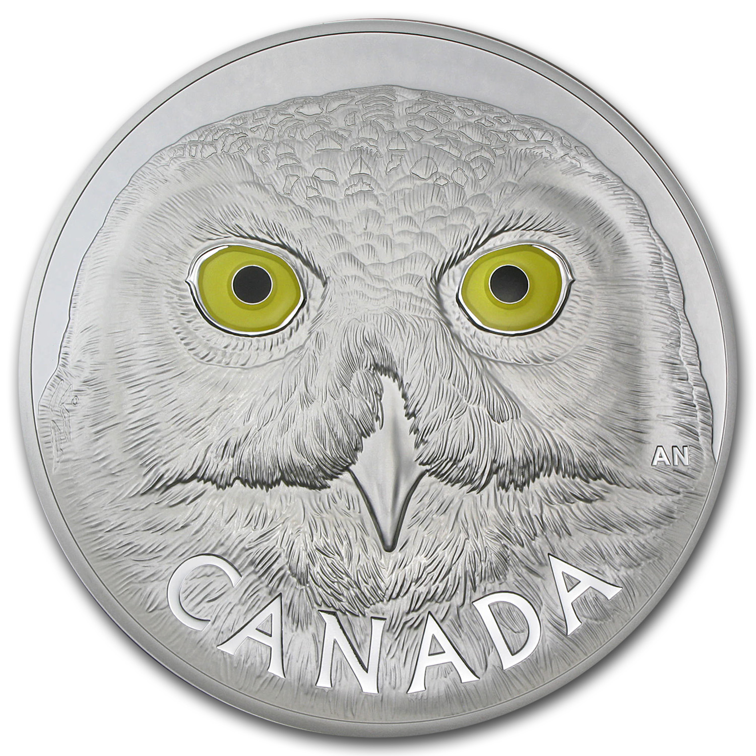 2014 1 Kilo Silver Canadian $250 In the Eyes of the Snowy Owl