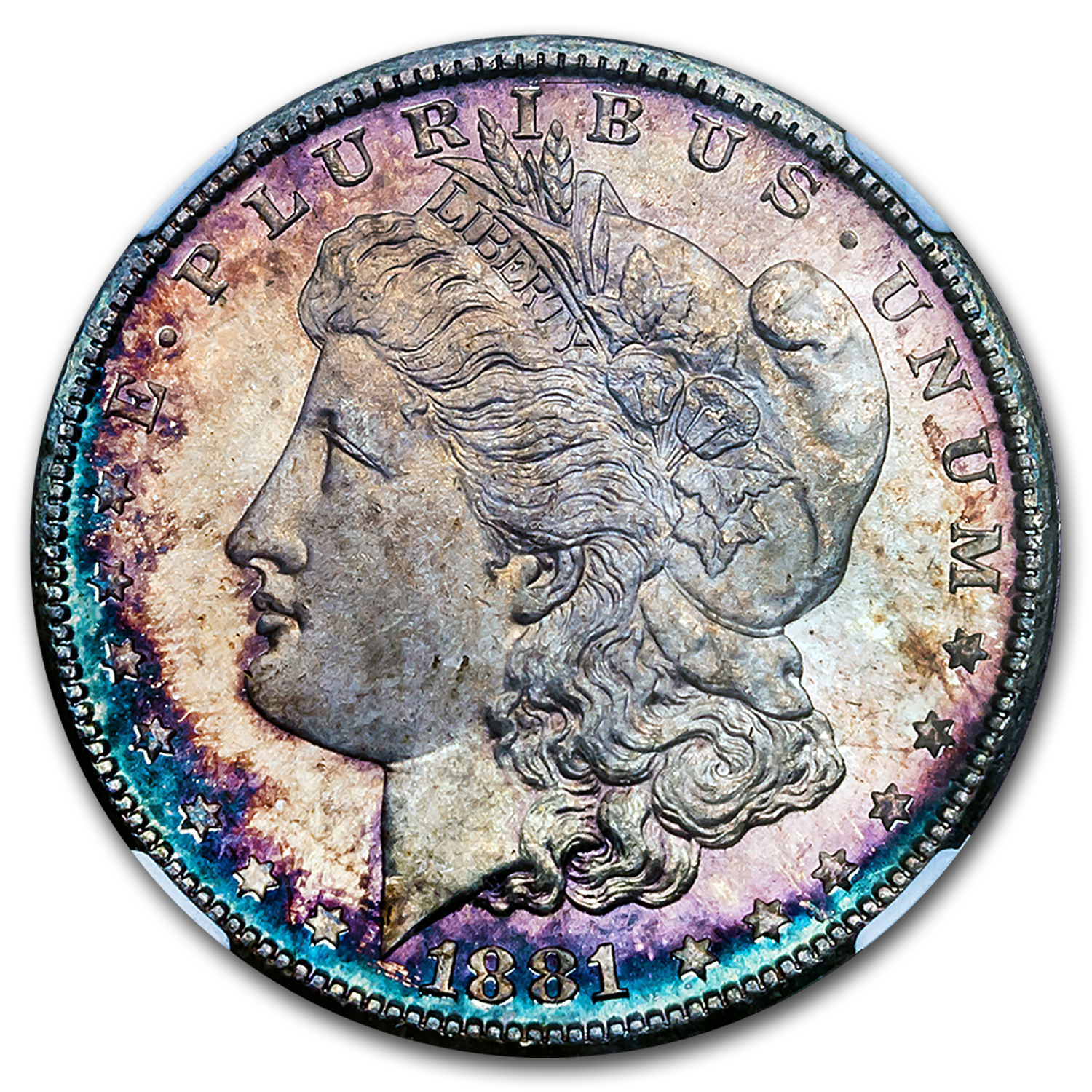 1878-1904 Morgan Dollars - MS-66 NGC (Beautifully Toned)