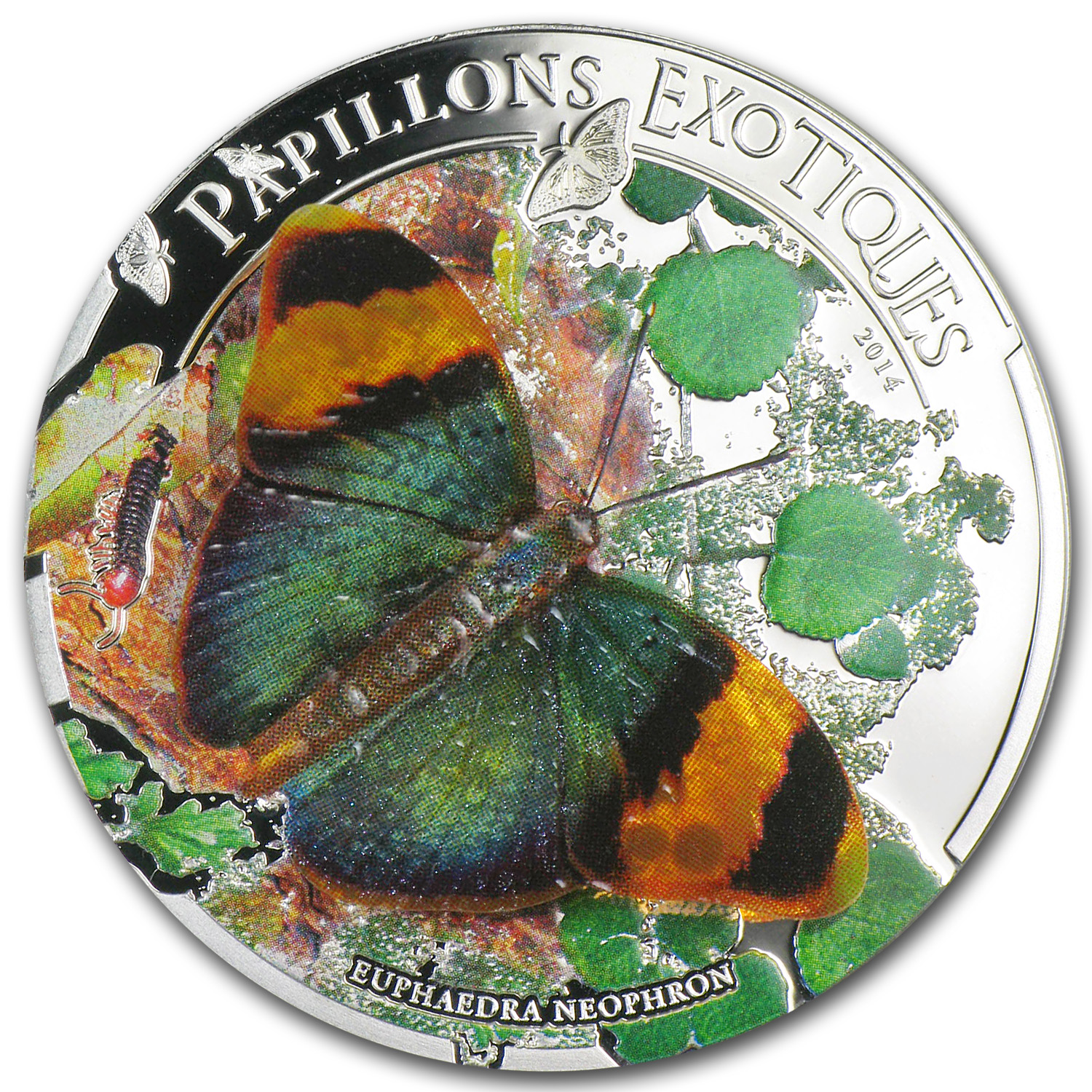 2014 Central African Rep Silver 3d Exotic Butterflies
