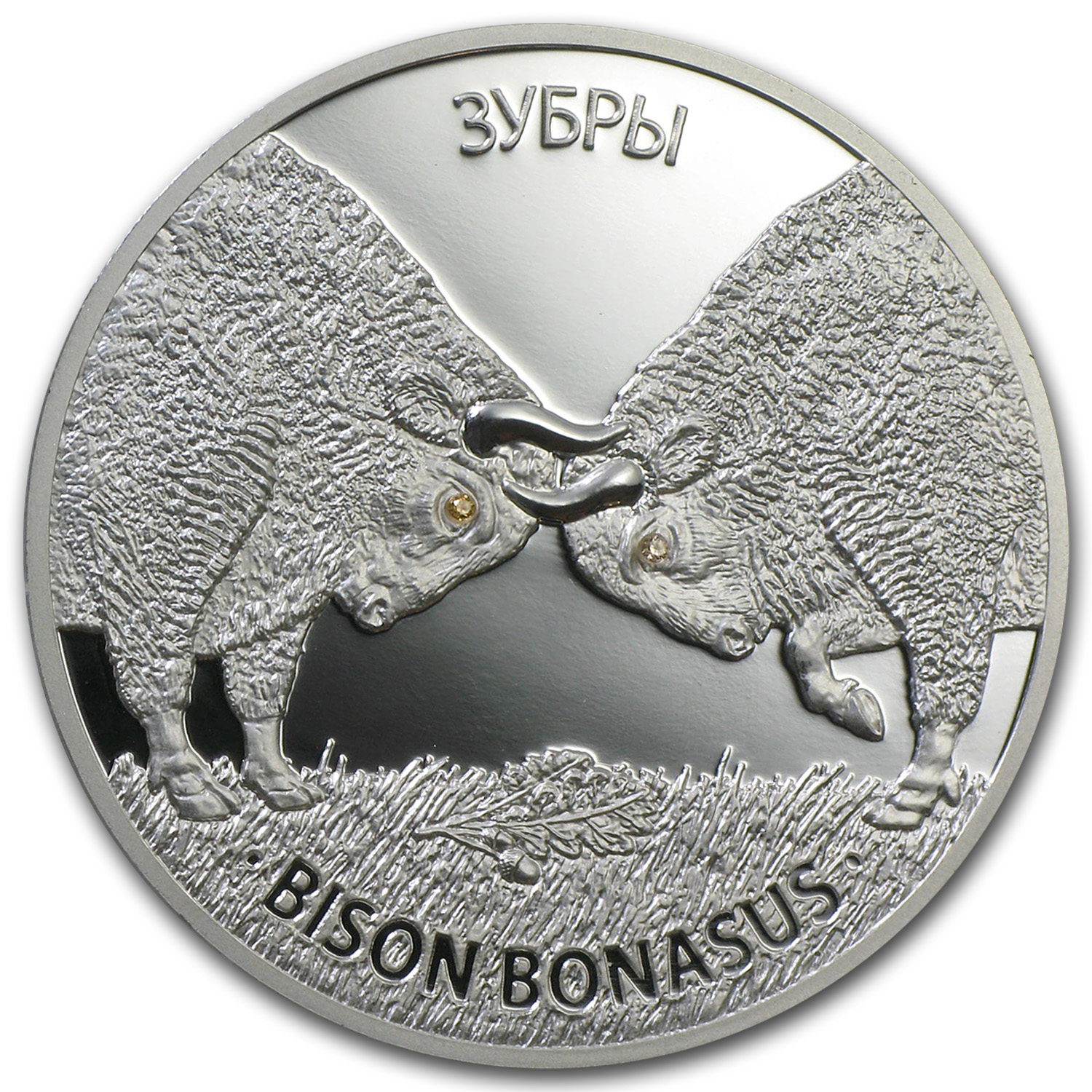2012 Belarus 1 oz Silver Proof 20 Rubles Bison Bonasus