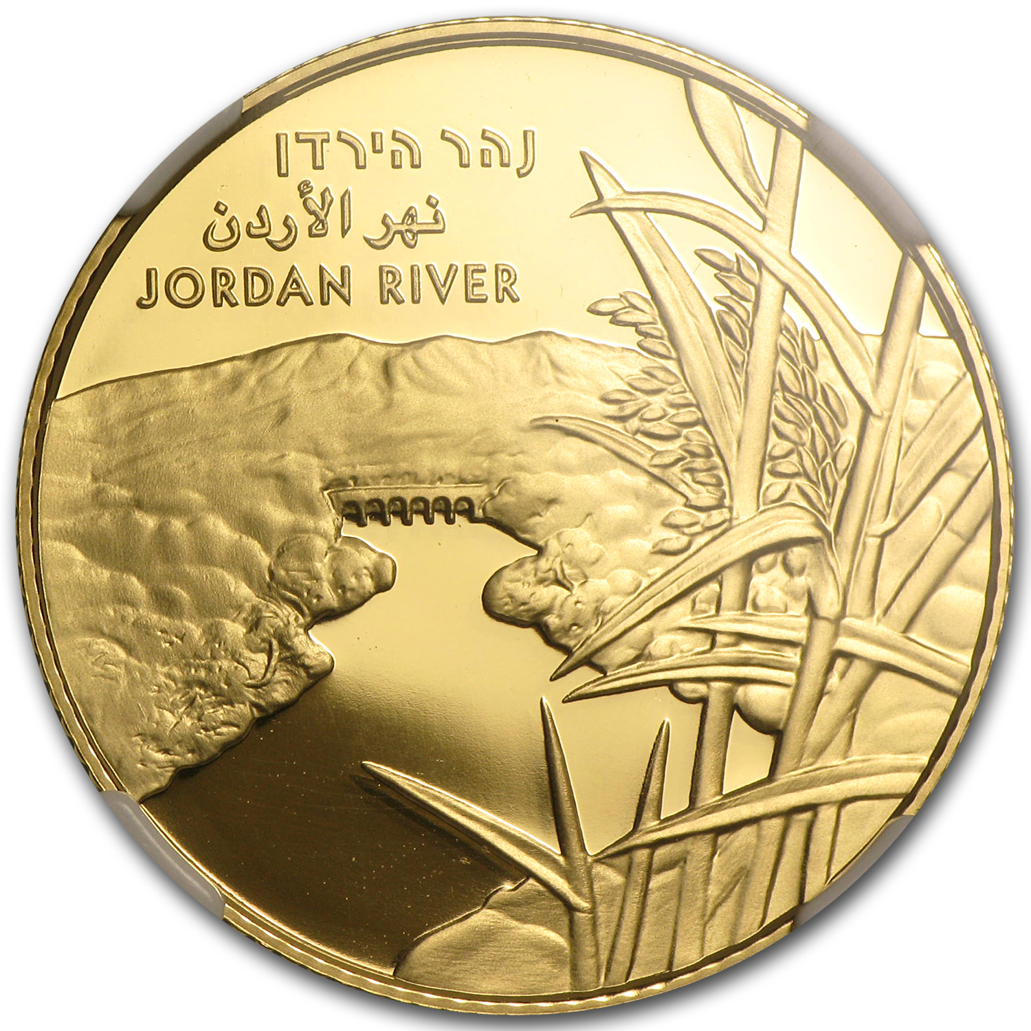2013 Israel The Jordan River 1/2 oz PF-69 UCAM ER NGC