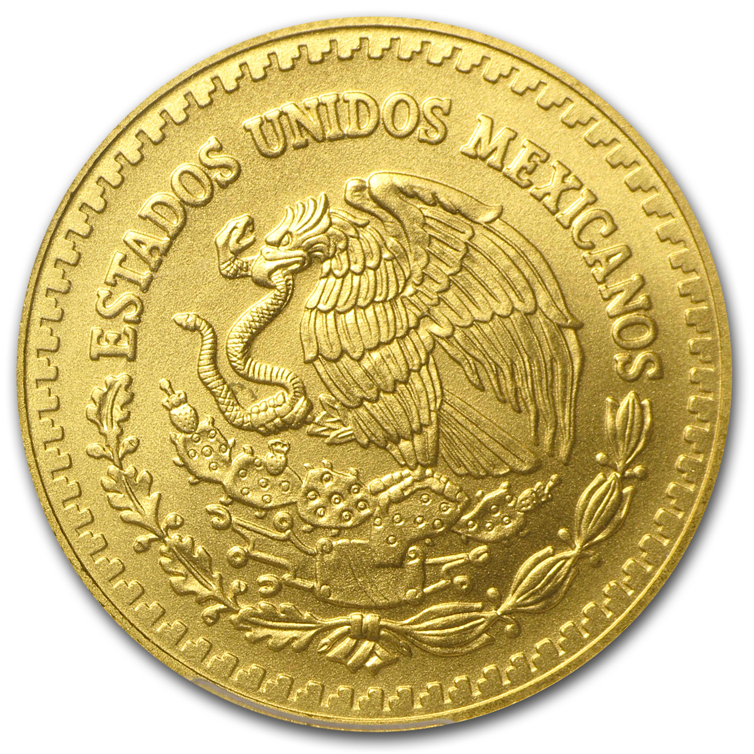 2014 1/2 oz Gold Mexican Libertad MS-69 PCGS