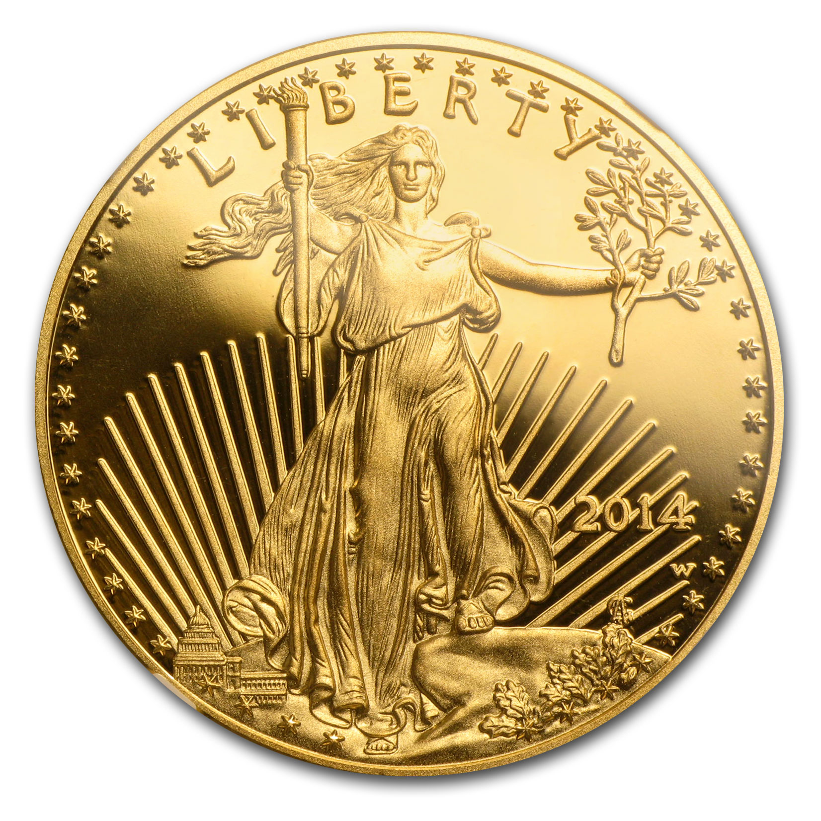 2014-W 1 oz Proof Gold American Eagle PF-70 NGC