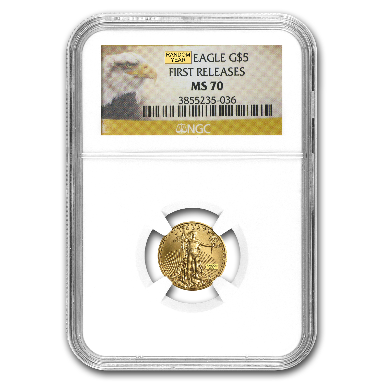 1/10 oz Gold American Eagle MS-70 NGC (Random Year)