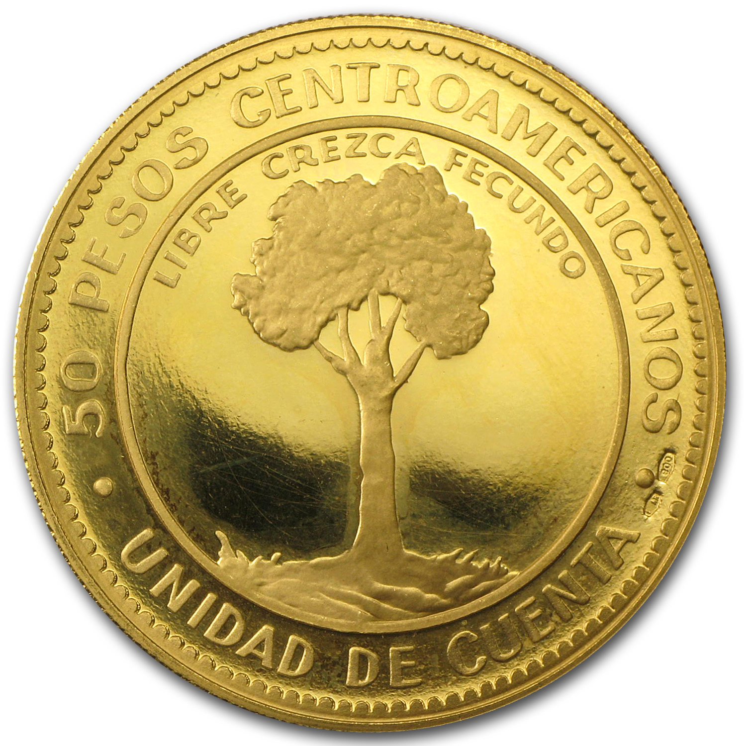 Central America Gold 50 Pesos Economic Integration - AGW .5787