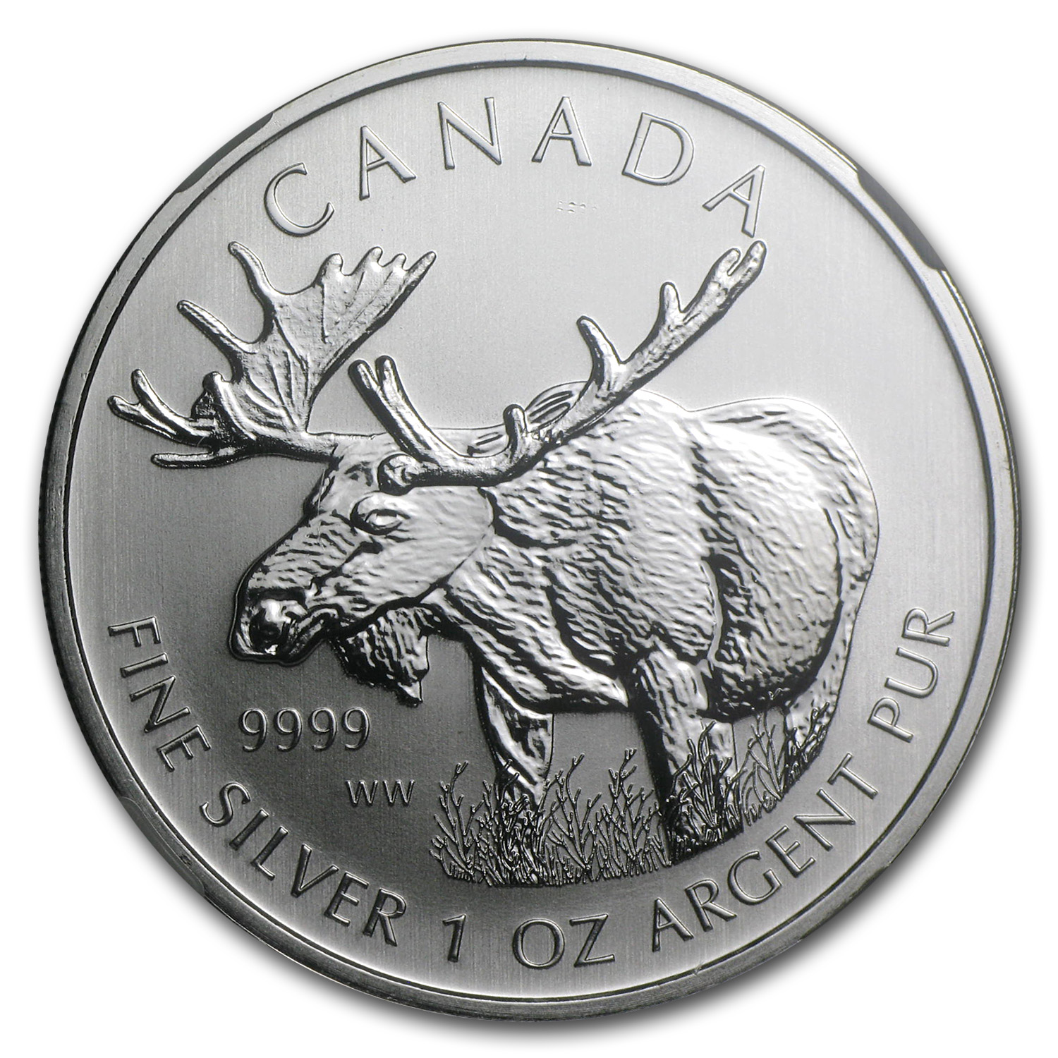 2012 1 oz Silver Canadian Wildlife Series Moose MS-69 NGC (ER)