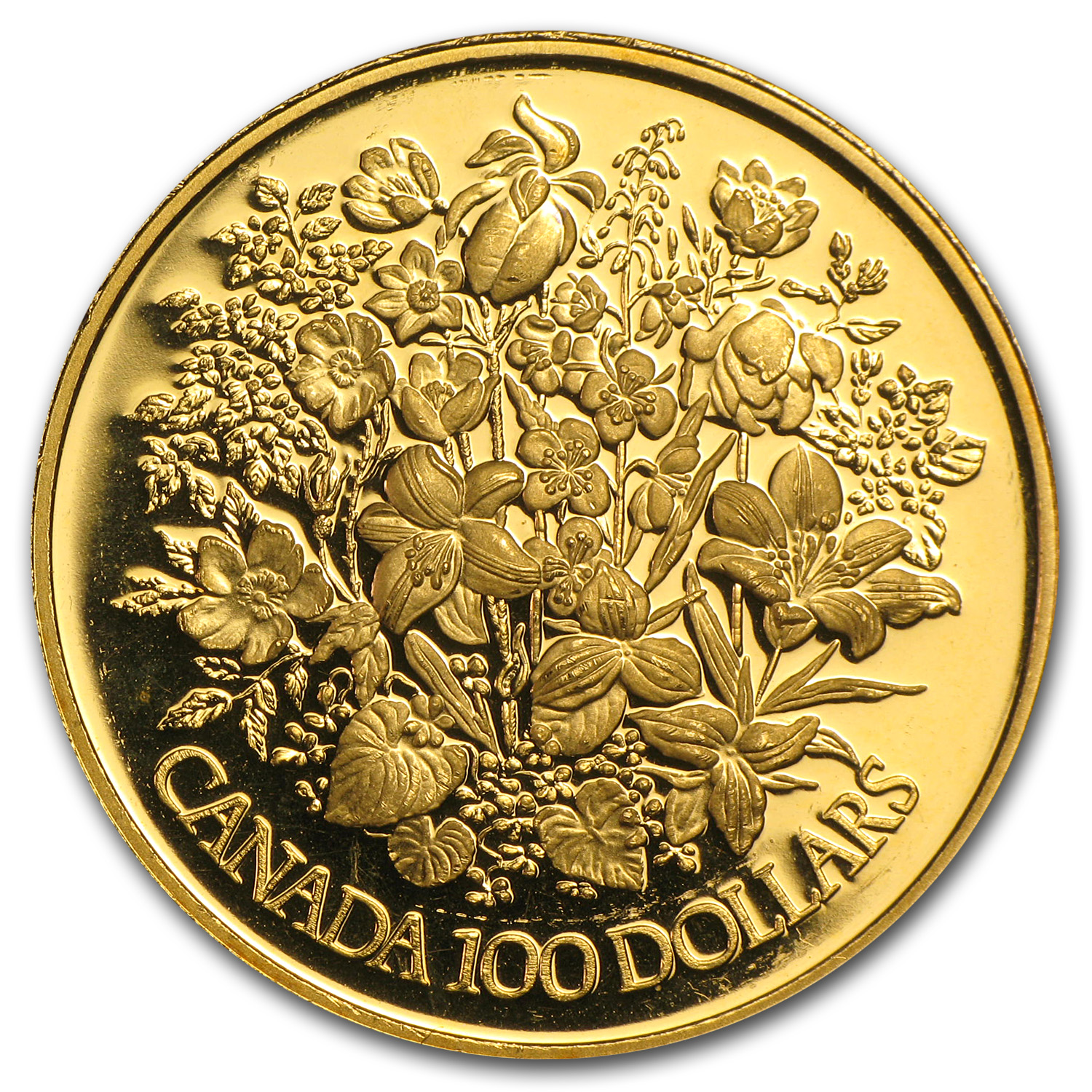 1977-1986 1/2 oz Gold Canadian $100 Proof (Abrasions)