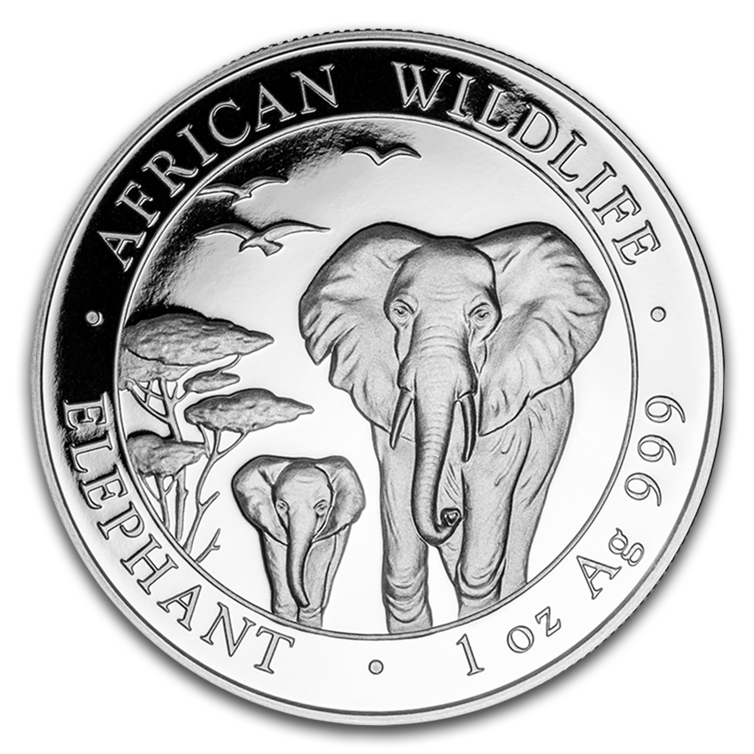 2015 Somalia 1 oz Silver Elephant (20-Coin MintDirect® Tube)