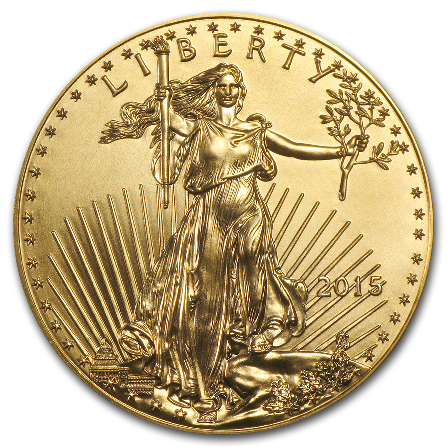 2015 1 oz Gold American Eagle (20-Coin MintDirect® Tube)