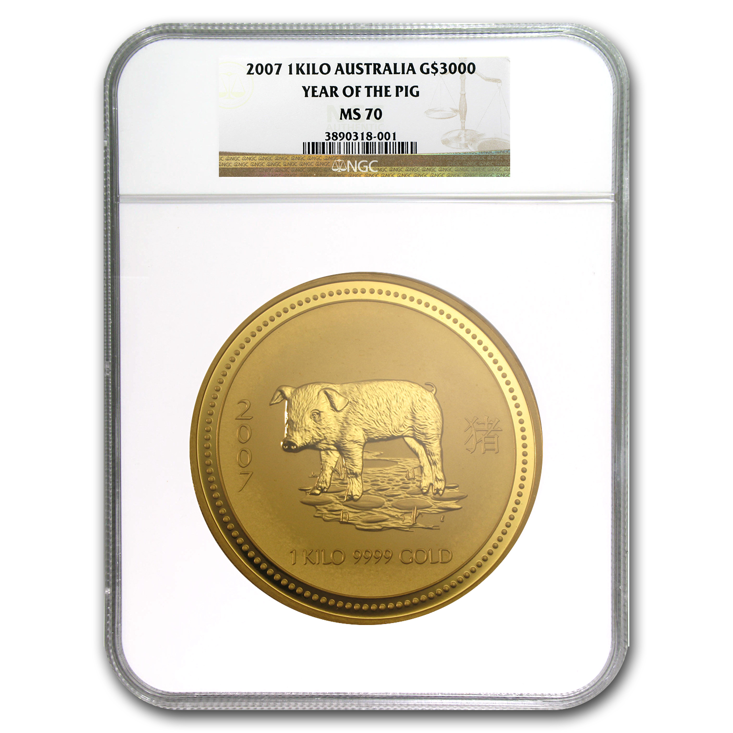 2007 1 kilo Gold Year of the Pig Lunar SI MS-70 NGC