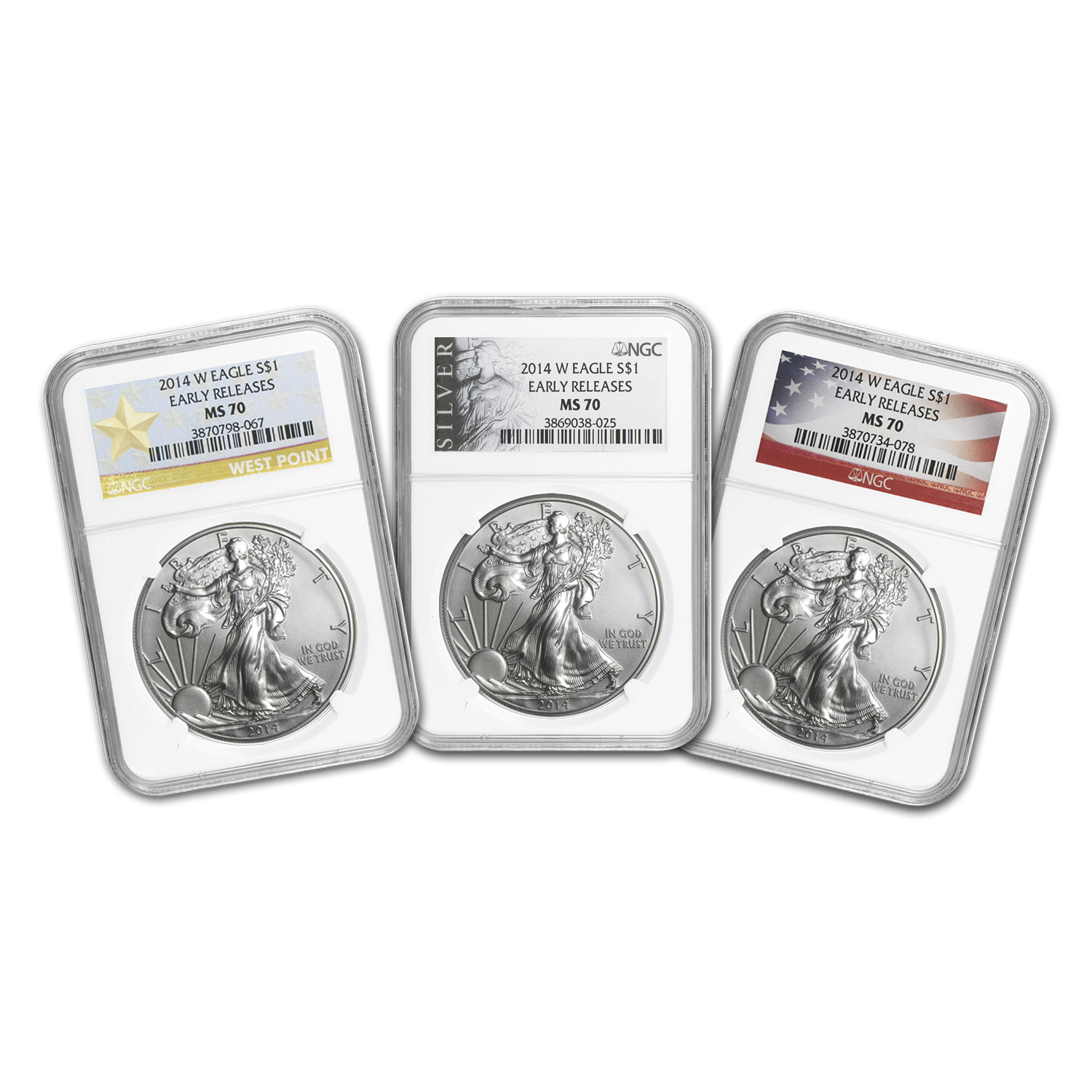 2014-W Burnished Silver Eagle MS-70 NGC (ER, Various Label)