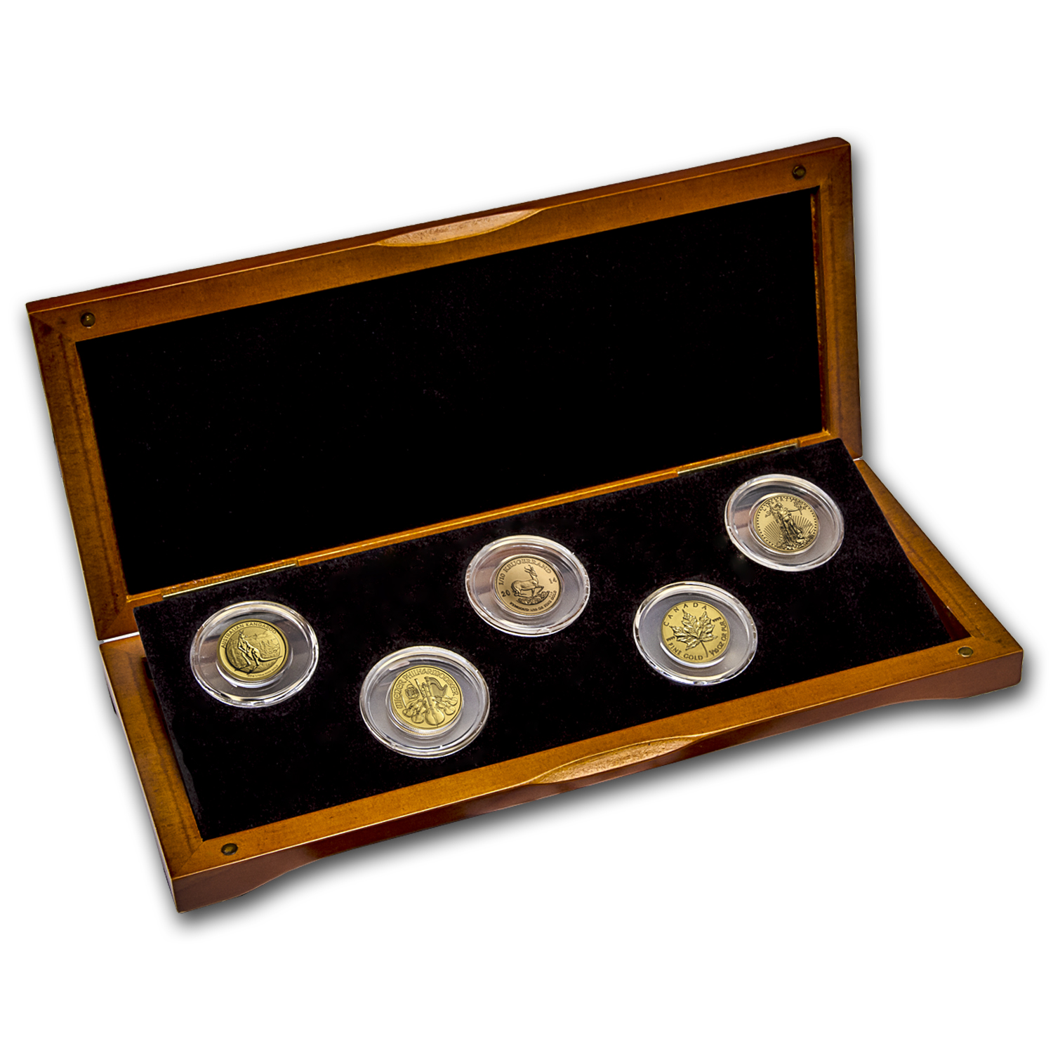 2014 5-Coin 1/10 oz Gold Sample Set for New Investors