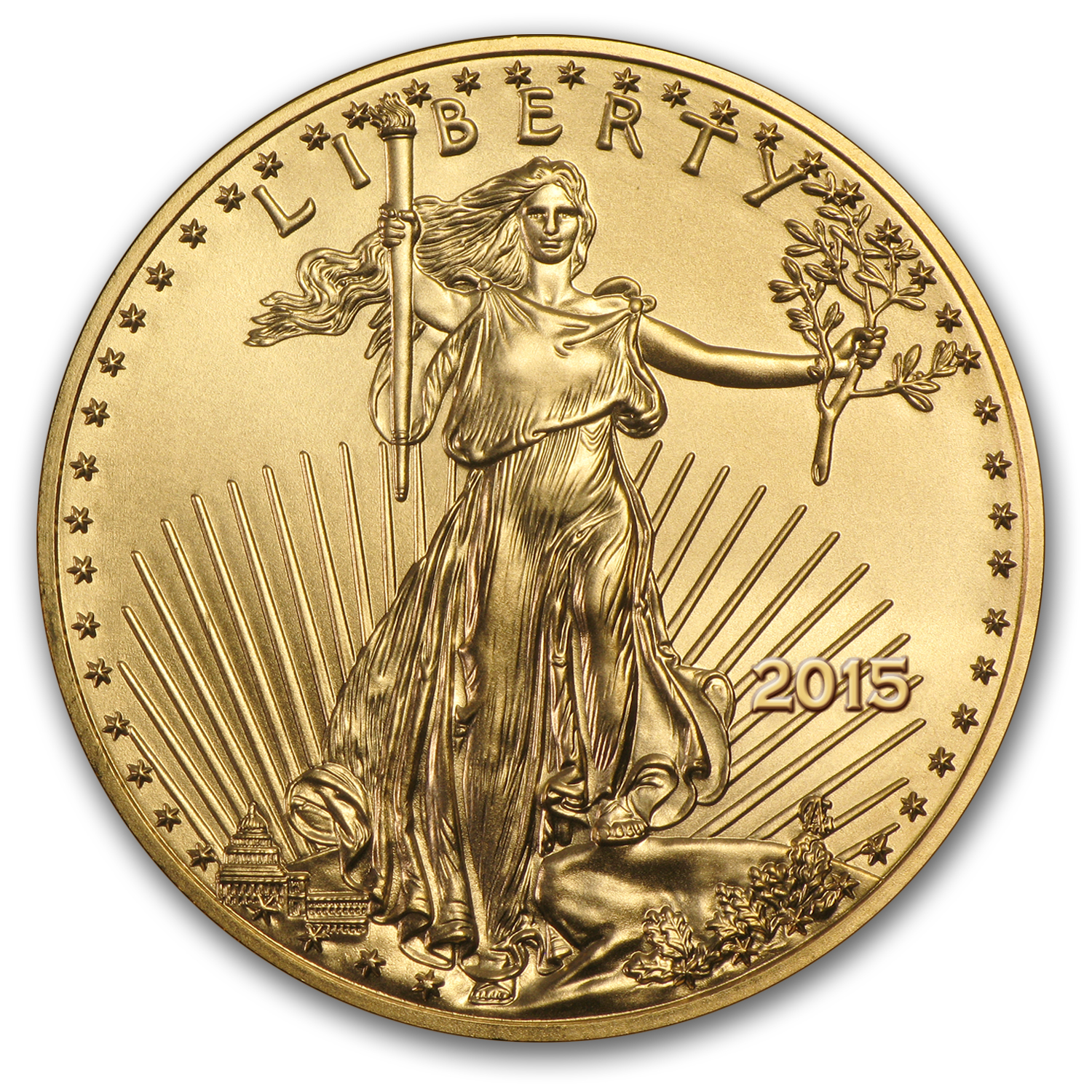 2015 1/4 oz Gold American Eagle MS-70 NGC (Early Releases)