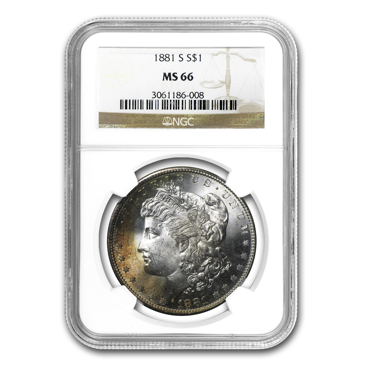 1878-1904 Morgan Dollars MS-66 NGC (Beautiful Toning)