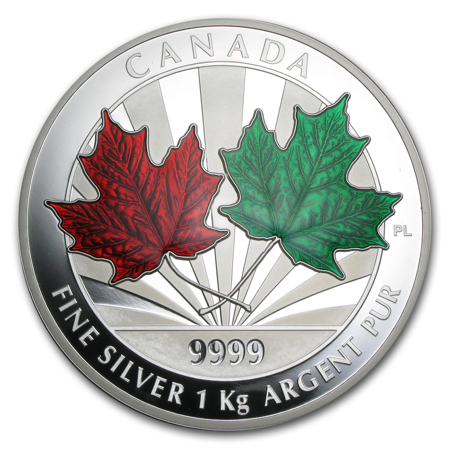 2014 Canada 1 kilo Silver $250 Maple Leaf Forever (Scratched)