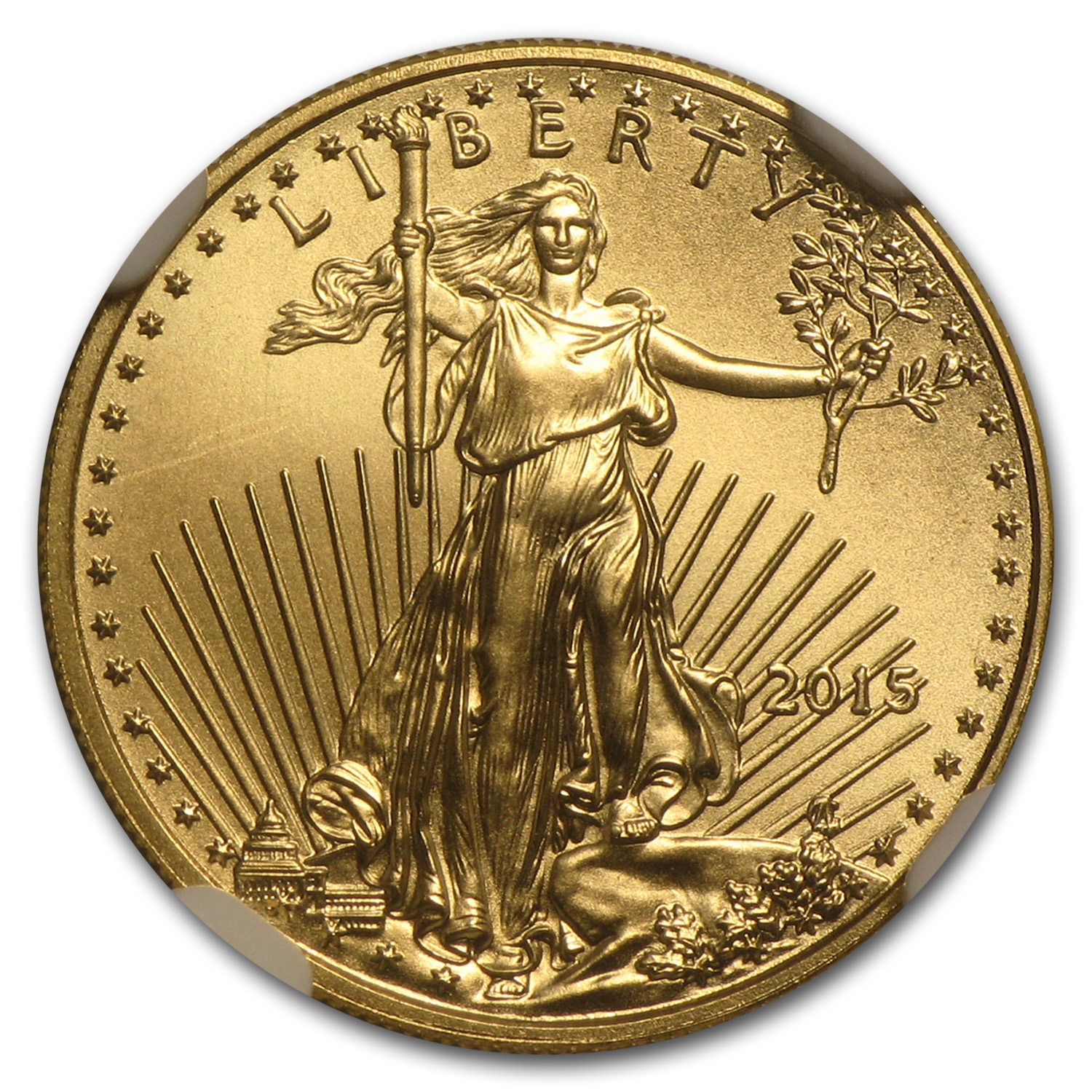 2015 1/10 oz Gold American Eagle MS-70 NGC (Narrow Reeds)