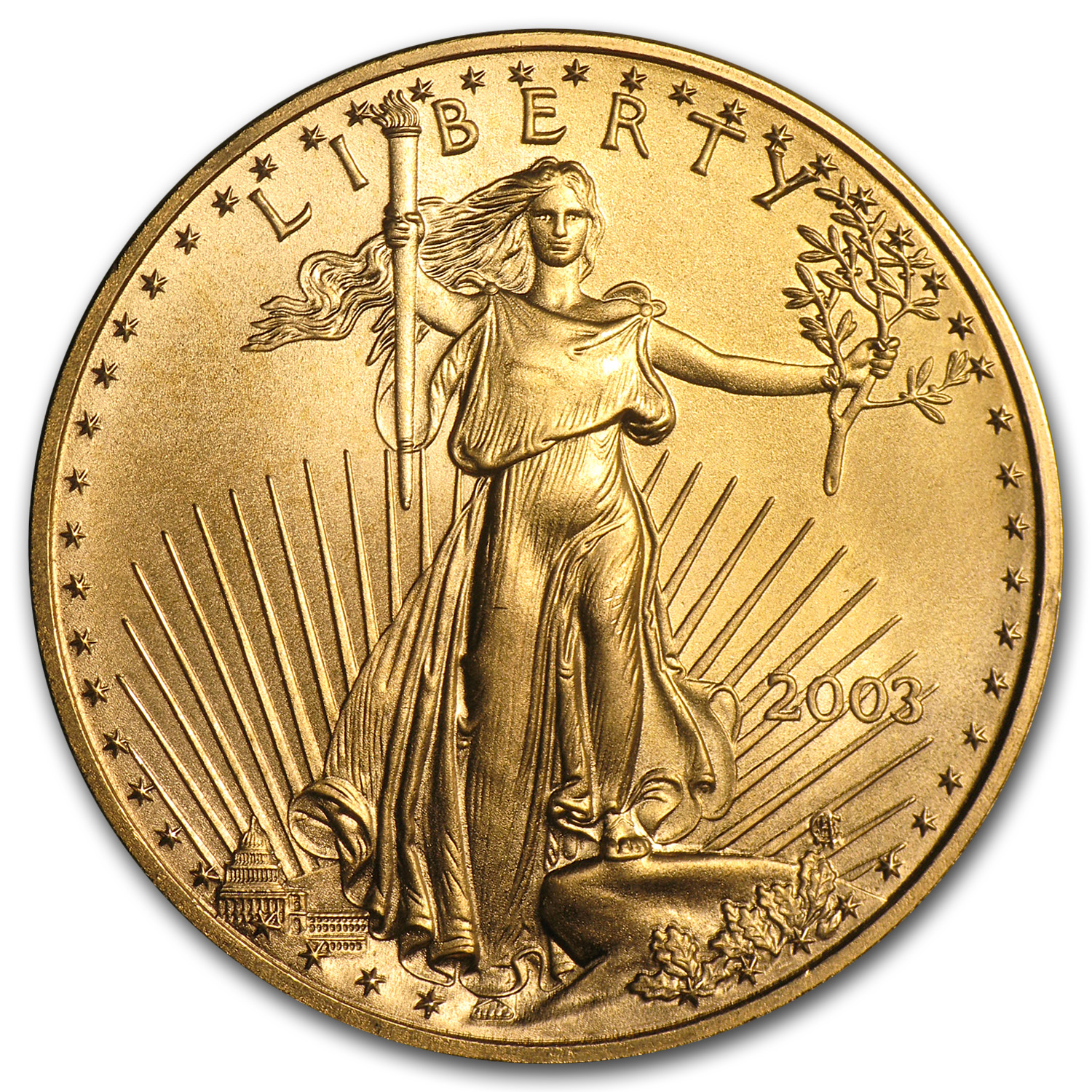 2003 1 oz Gold American Eagle BU
