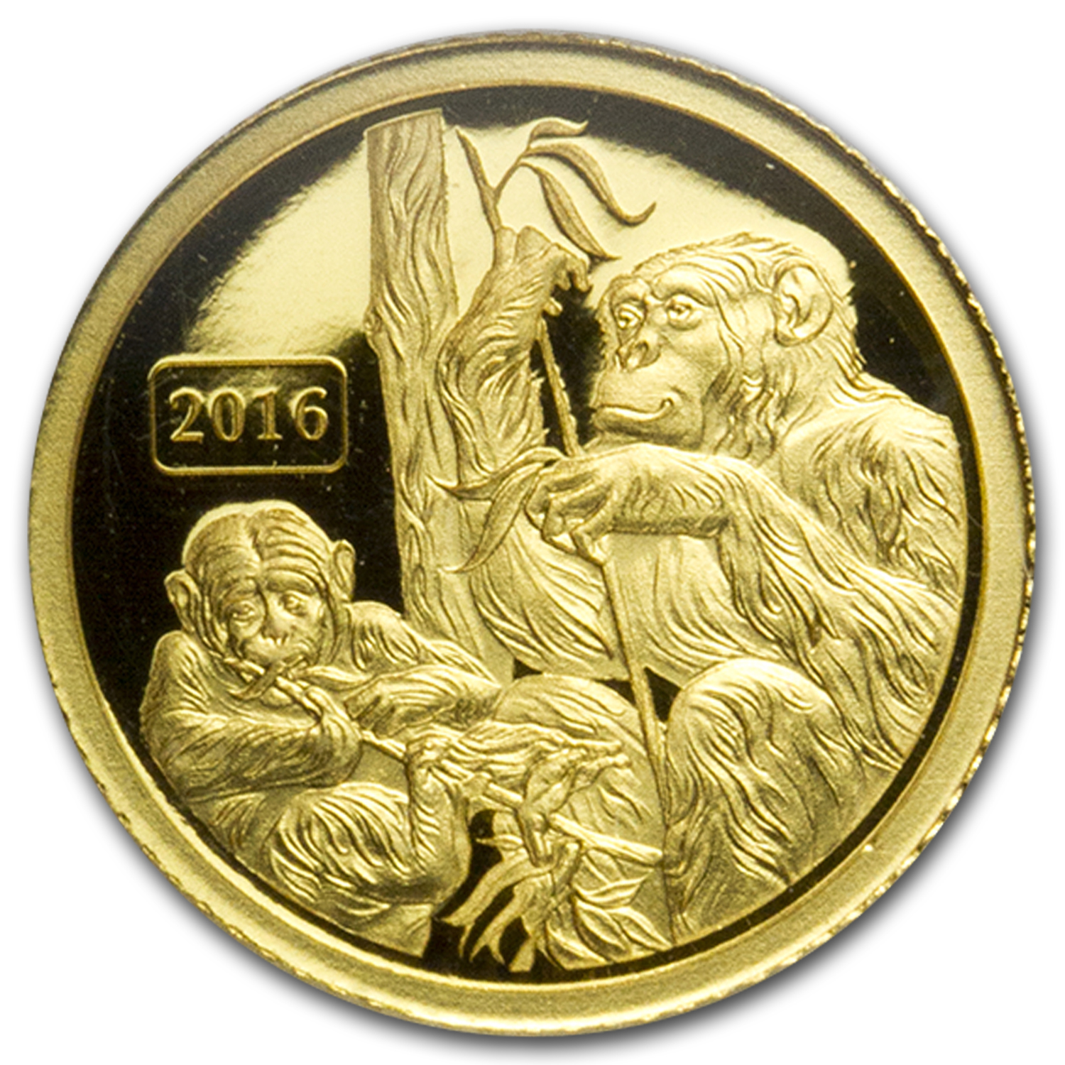2016 Tokelau 1/2 gram Gold $5 Lunar Monkey Family